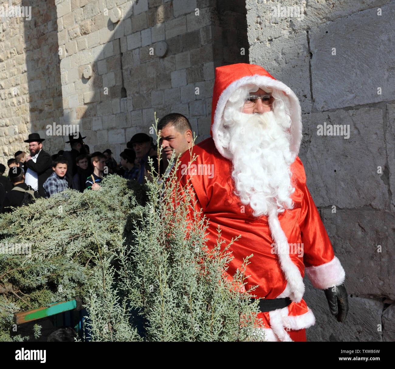 Jews Christmas Trees.Ultra Orthodox Jews Stand Behind Israeli Arab Issa