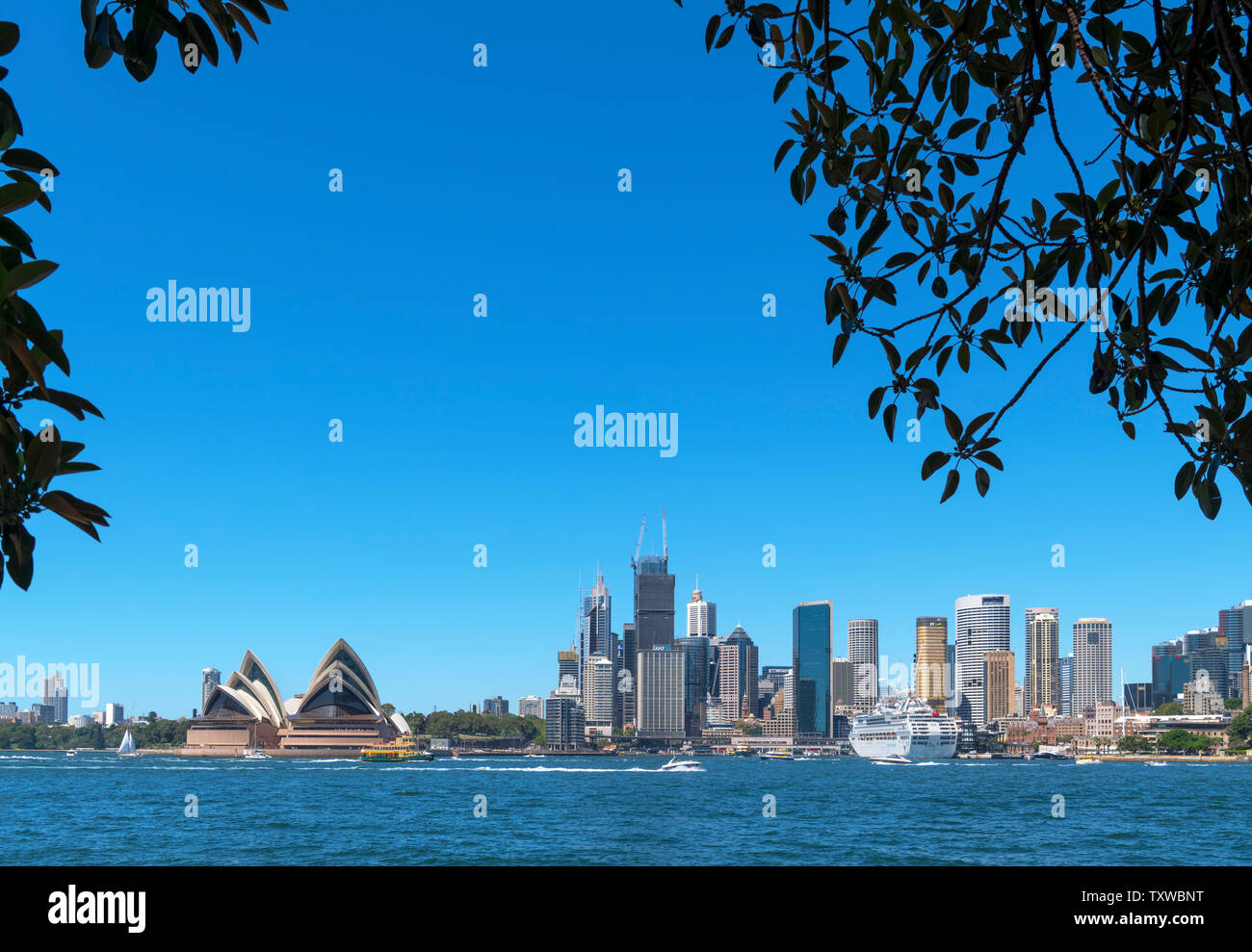 Sydney Opera House and the Central Business District skyline from Kirribilli, Sydney, Australia - Stock Image