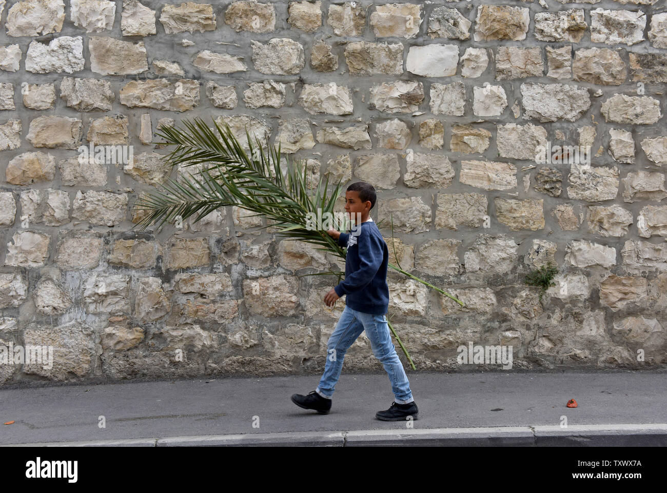 A Palestinian boy carries palm branches to sell to pilgrims