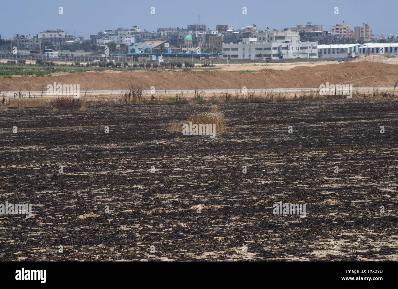 Houses in the Gaza Strip are seen behind wheat fields in Kibbutz Nahal Oz, on the Israeli- Gaza border, that were burned by fires started by kites sent by Palestinian protesters in Gaza, June 5, 2018. Over 600 kites have been flown into Israel from the Gaza Strip, destroying 9000 square meters of crops and forests.    Photo by Debbie Hill/UPI - Stock Image