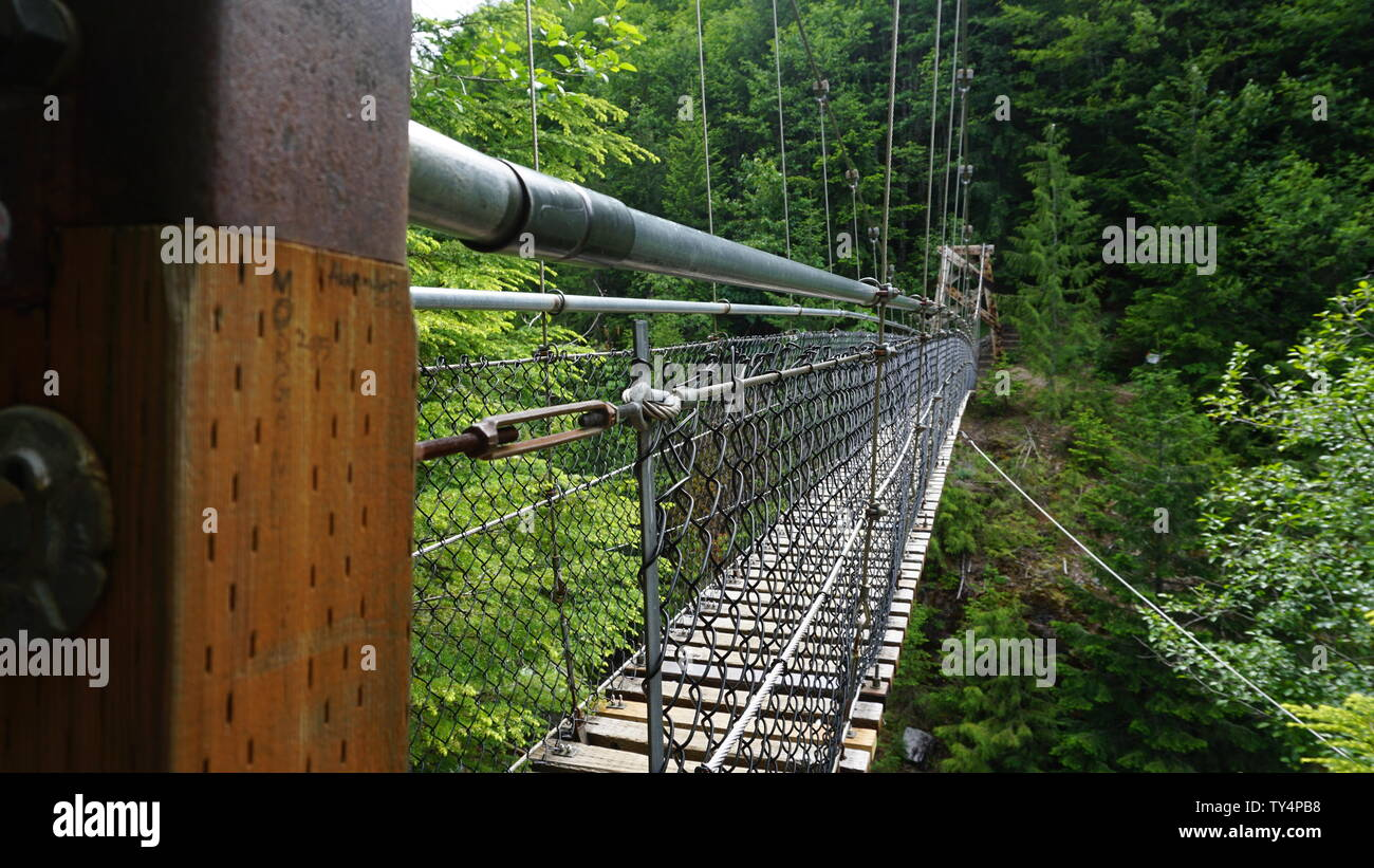 Bridge over river at Mt. St. Helens - Stock Image