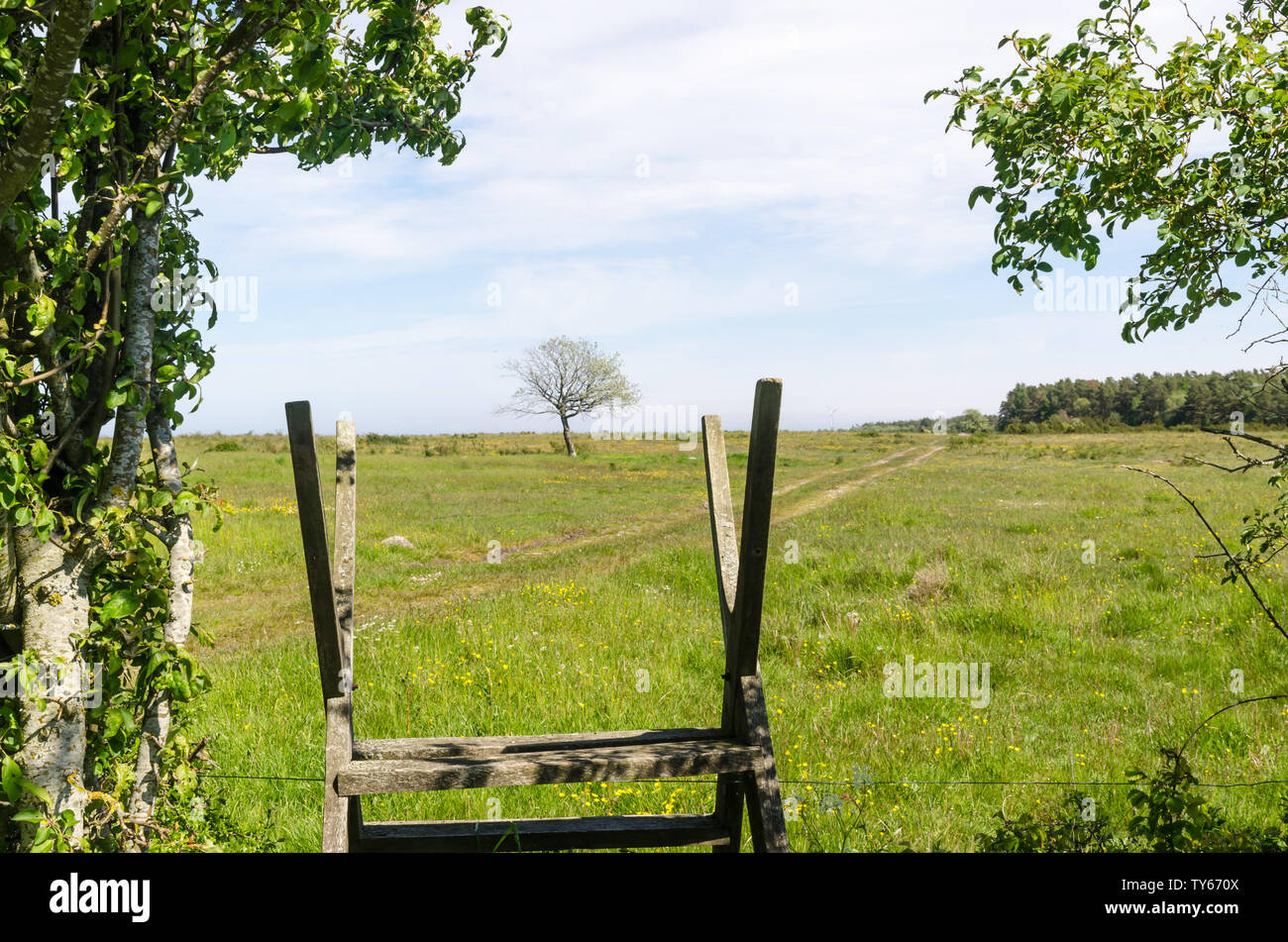 Wooden stile by a green and bright pastureland by spring season at the swedish island Oland - Stock Image