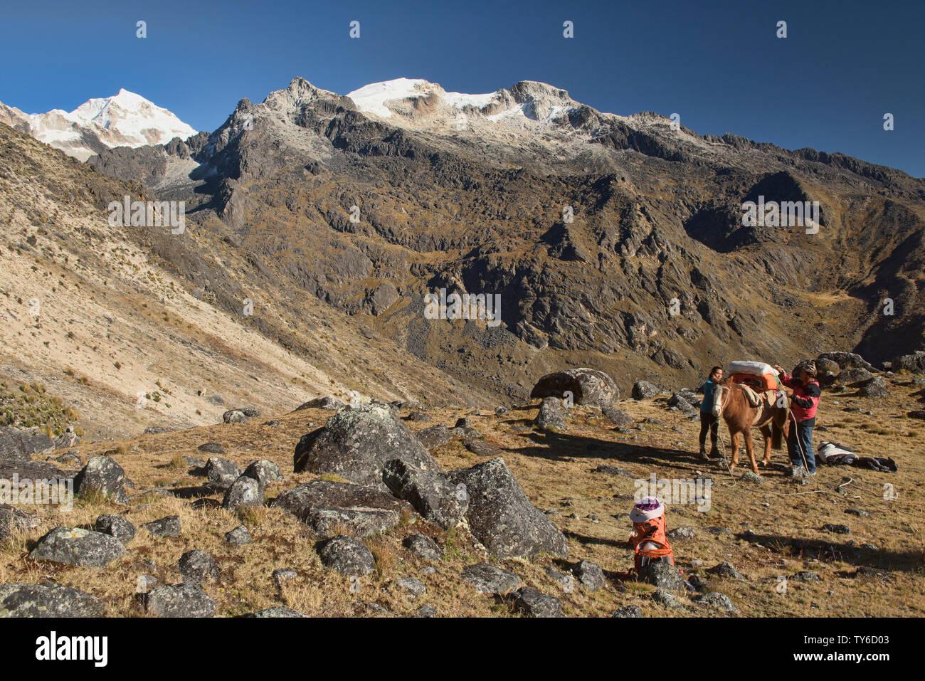 Loading the horses, Cordillera Real Traverse, Bolivia - Stock Image
