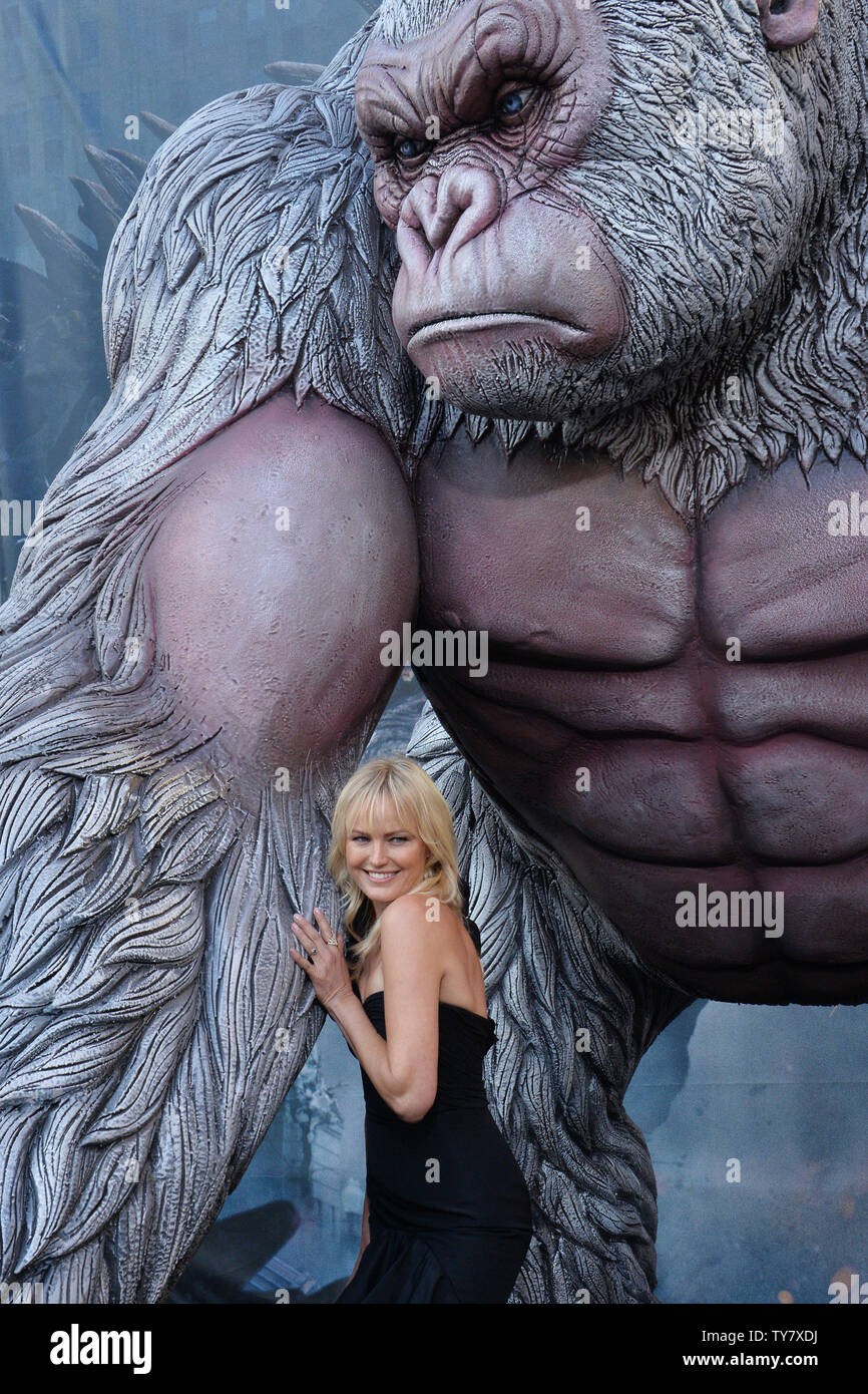 Akerman Rampage High Resolution Stock Photography And Images Alamy