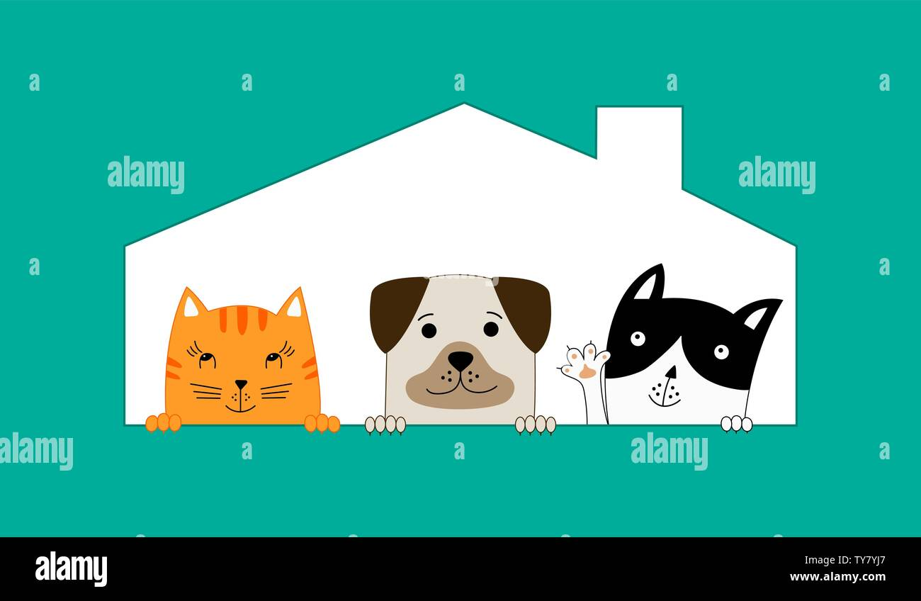 Two cats and one dog sitting in their house. Pet shop.  Funny dog and cute cats best friends. Vector illustration. - Stock Image