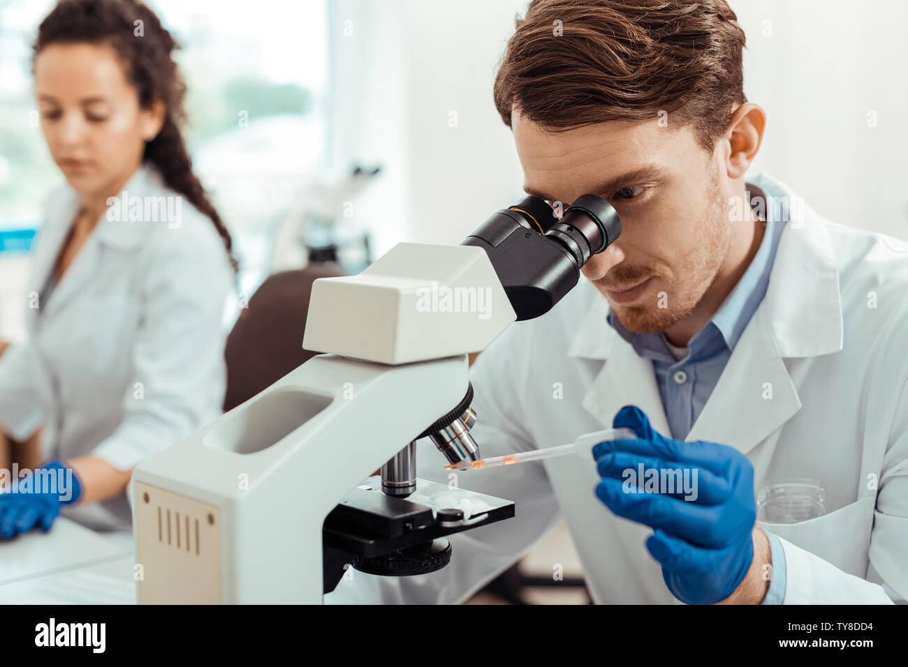Pleasant bearded man studying a sample under the microscope - Stock Image