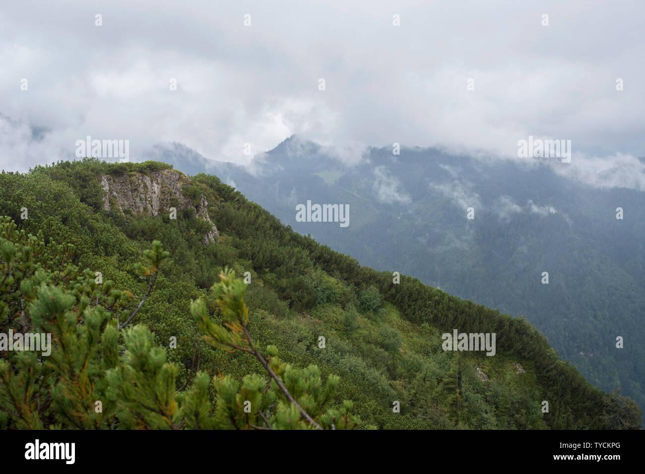 Hochfelln mountain, view from summit plateau, Hochfelln mountain railway, Hochfelln, Chiemgau, Upper Bavaria, Bavaria, Bavarian Alps, Germany - Stock Image
