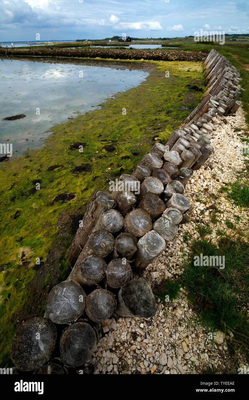 anthropogenic,climate,change,global,warming,sea,level,rise,Newtown,Nature,Reserve,Isle of Wight,England,UK, Stock Photo