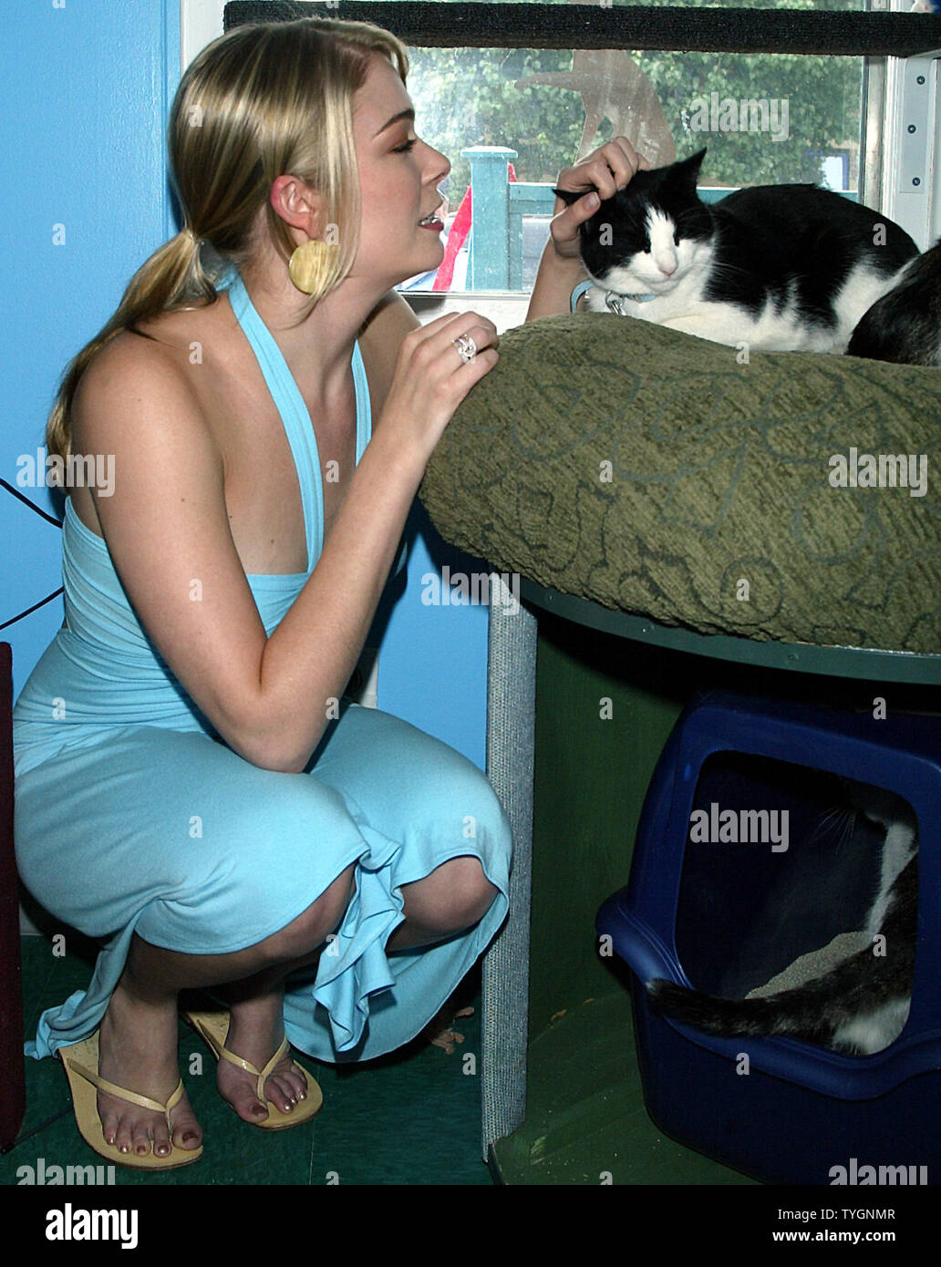 LeAnn Rimes poses for pictures with a shelter cat at the opening of