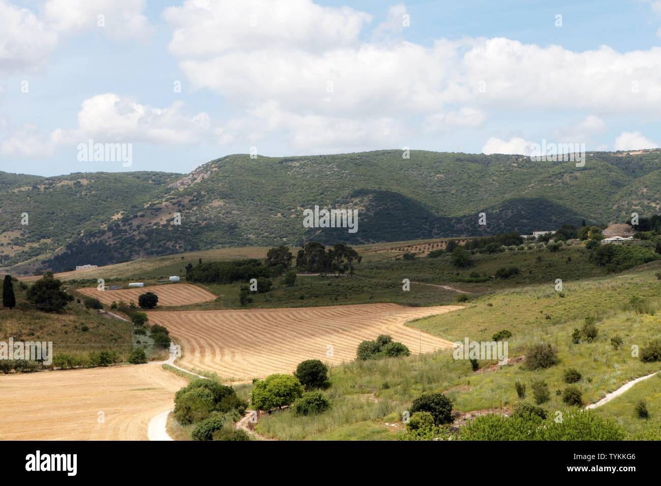 Panorama of the Jezreel Valley landscape, viewed from Mount Precipice. Northern Israel Stock Photo
