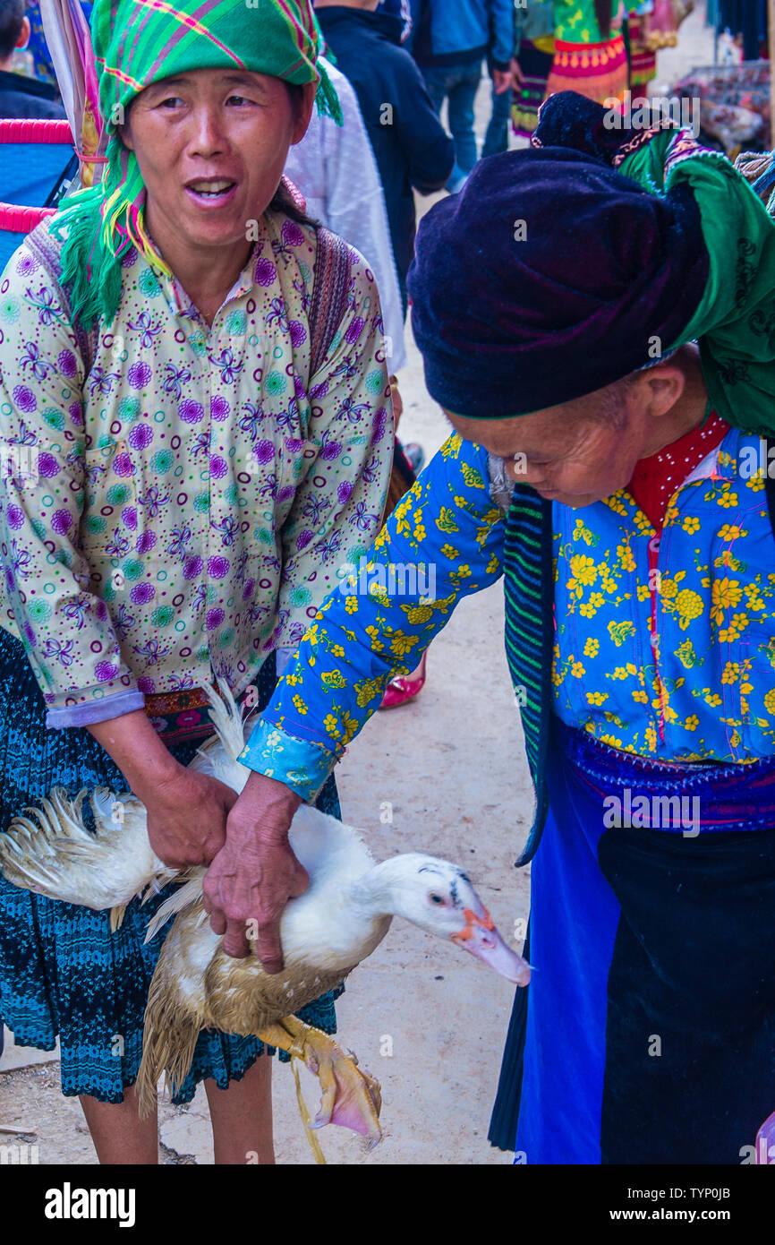 The weekend market in Dong Van Vietnam - Stock Image