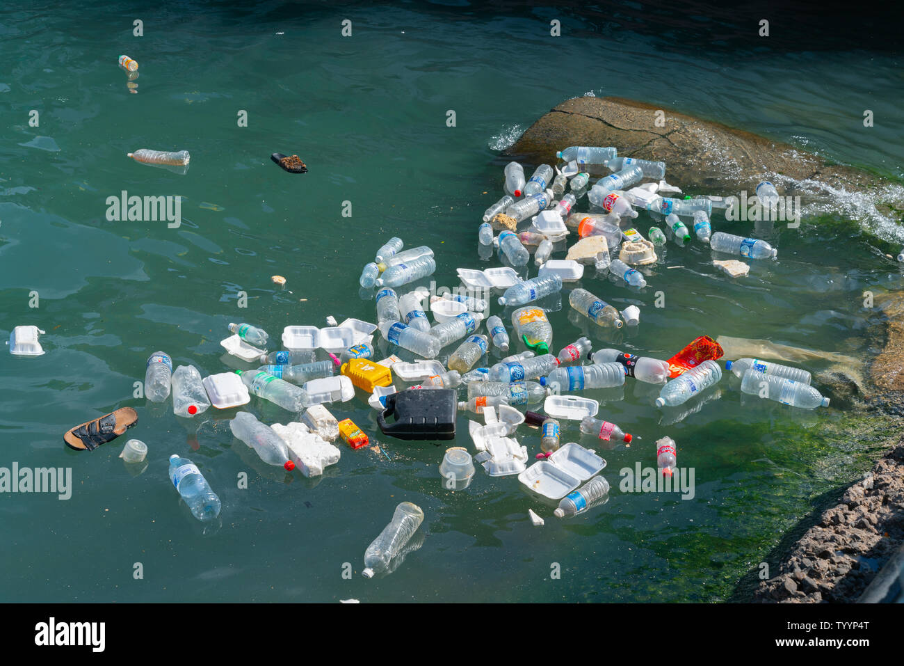 KOTA KINABALU BORNEO -JUNE 1 2019; Sea polution, plastic trash disposed of in harbor. - Stock Image