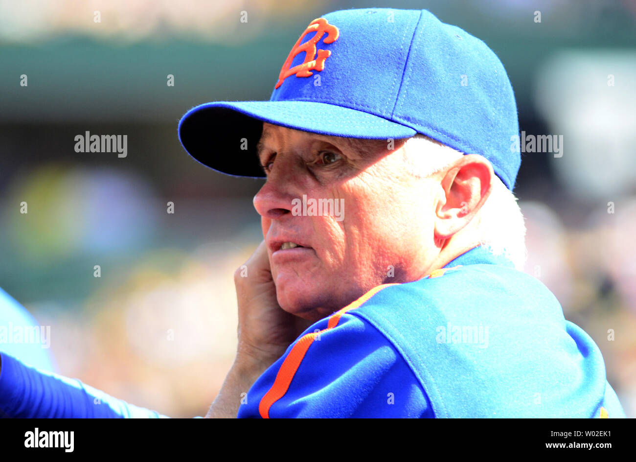 size 40 47f1a 1ed94 New York Mets manager Terry Collins looks to the field ...