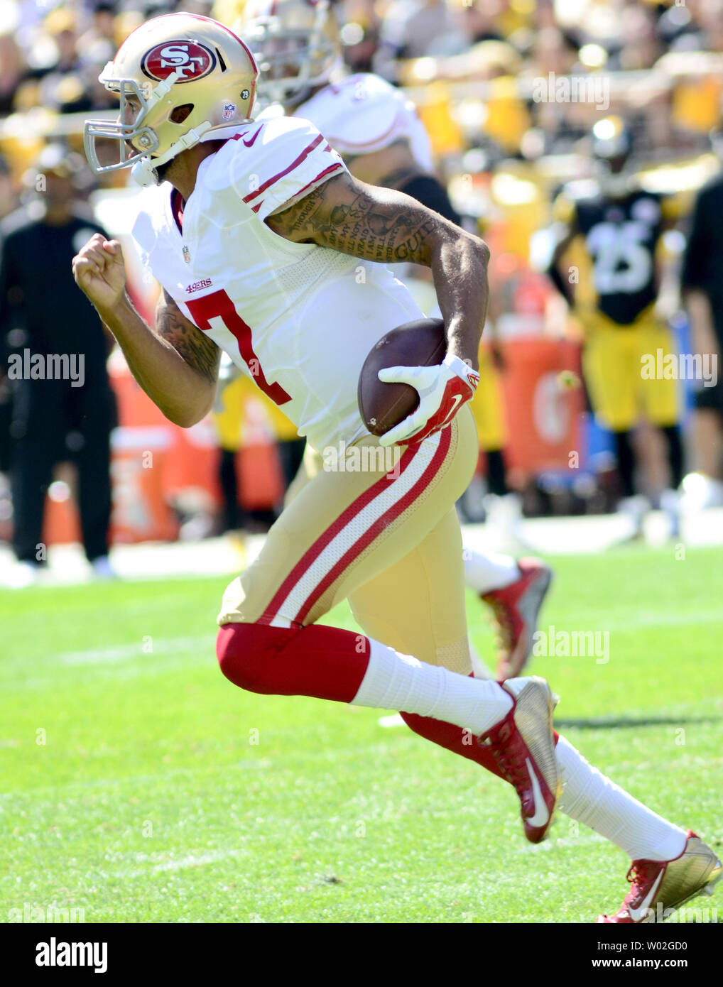 San Francisco 49ers quarterback Colin Kaepernick (7) fakes a handoff and runs  14 yards in first quarter against the Pittsburgh Steelers  at Heinz Field in Pittsburgh on September 20, 2015.  Photo by Archie Carpenter/UPI - Stock Image