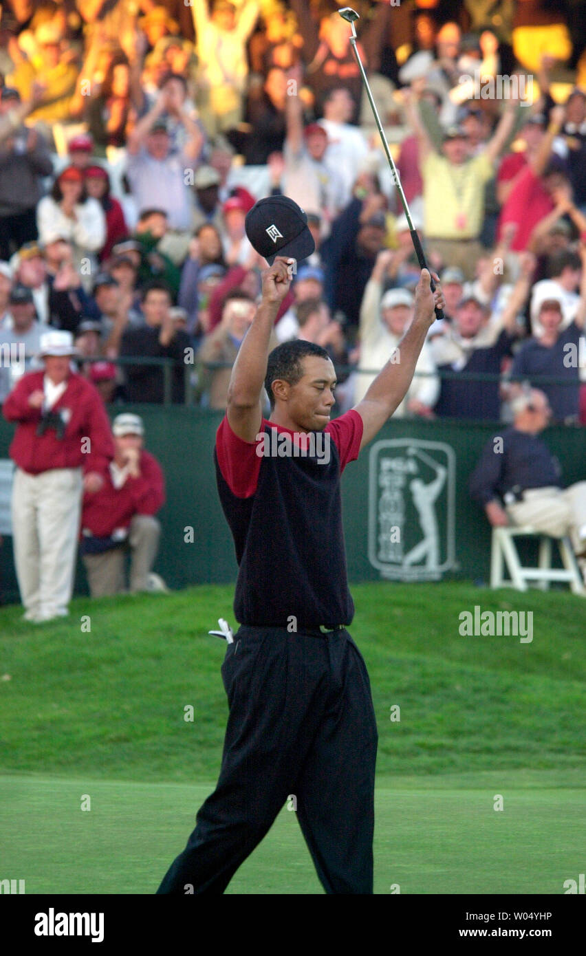 Tiger Woods celebrates his birdie putt on the 18th green to win the Buick Invitational at Torrey Pines golf course in San Diego, California, January 23, 2005. Woods fired a final round four-under-par 68 to win the by three shots finishing the tournament at 16-under.  (UPI Photo/Earl S. Cryer) - Stock Image