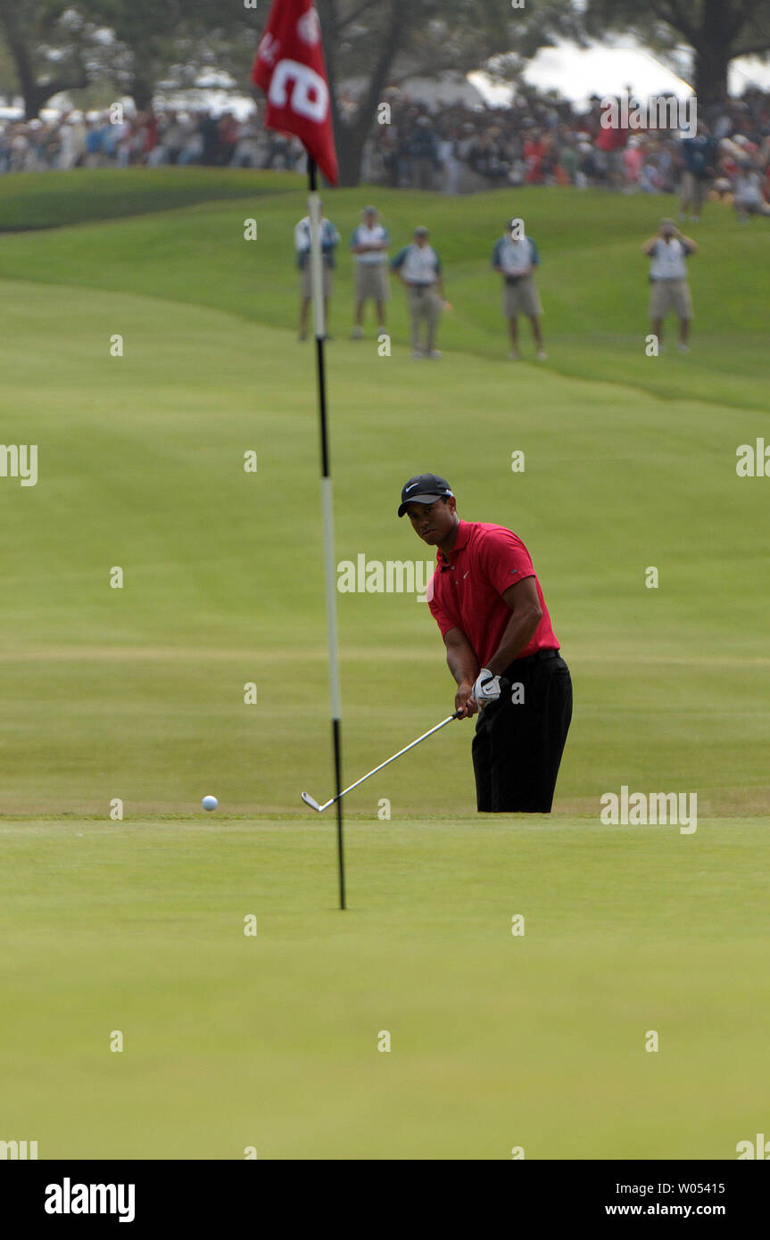 Tiger Woods chips onto the 6th green during the last day of regular play of the US Open at Torrey Pines Golf Course in San Diego on June 15, 2008. Woods tied for first with Rocco Mediate and a playoff round will be held tomorrow. (UPI Photo/Earl S. Cryer) - Stock Image