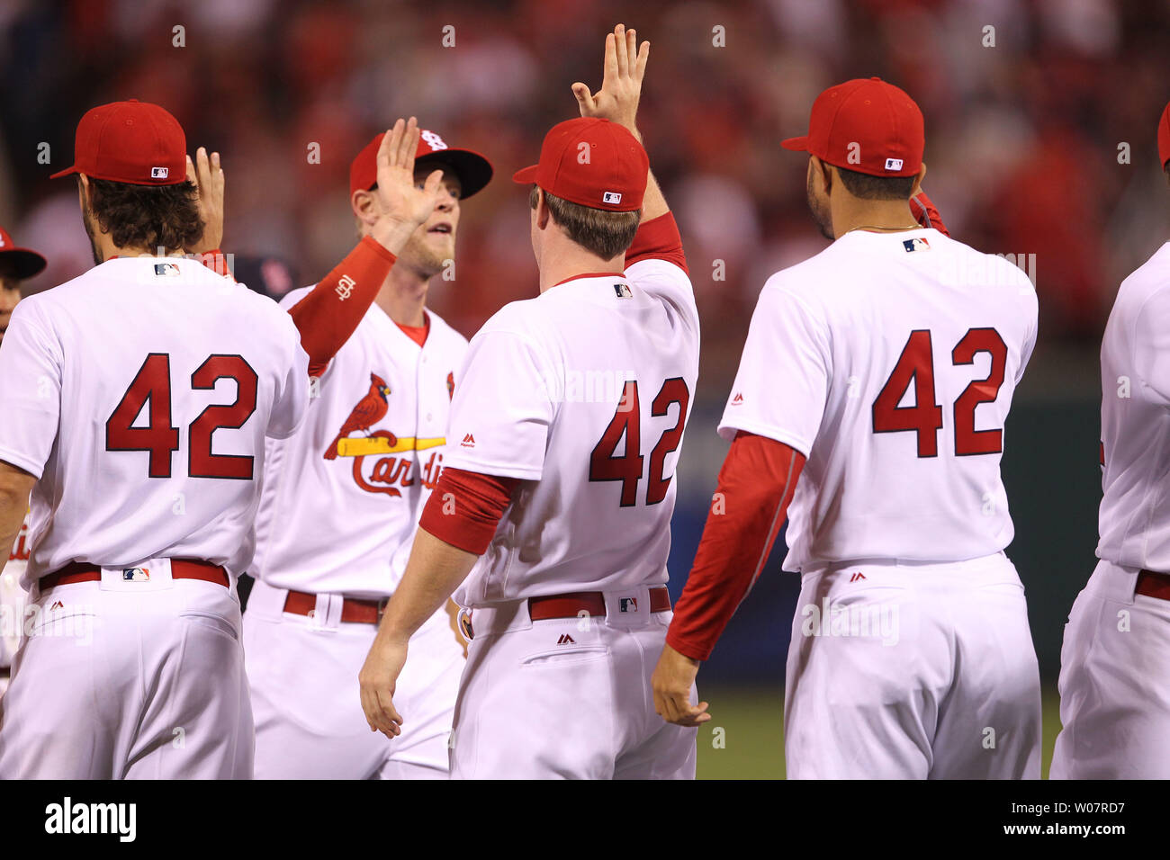 the best attitude ca7dd 8d515 St. Louis Cardinals players line up to high five each other ...