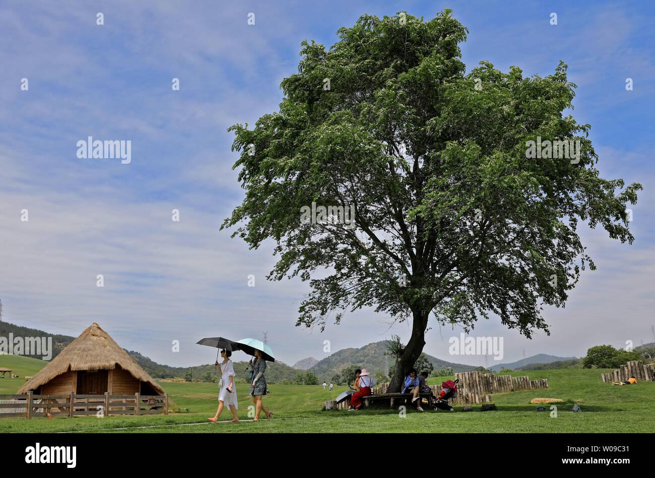 (190627) -- DALIAN, June 27, 2019 (Xinhua) -- Tourists visit the Sanhuan pastureland in Dalian, northeast China's Liaoning Province, June 26, 2019. (Xinhua/Yao Jianfeng) - Stock Image