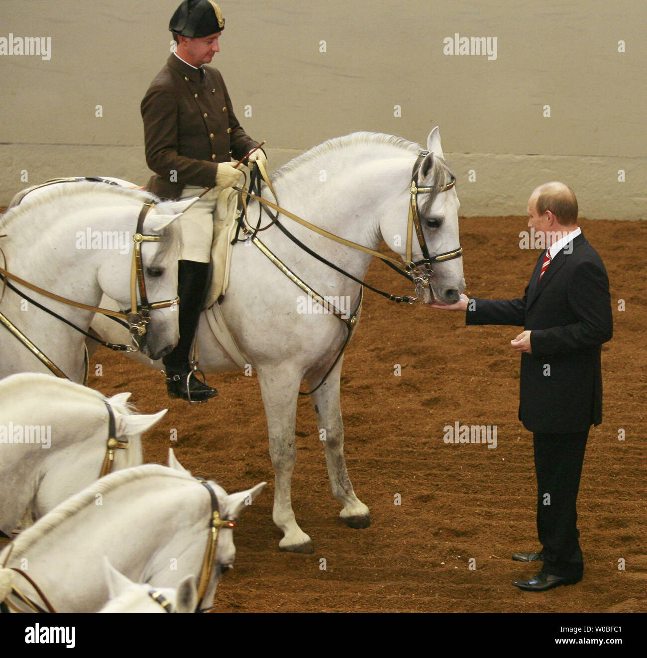 Russian President Vladimir Putin Riding High Resolution Stock Photography And Images Alamy