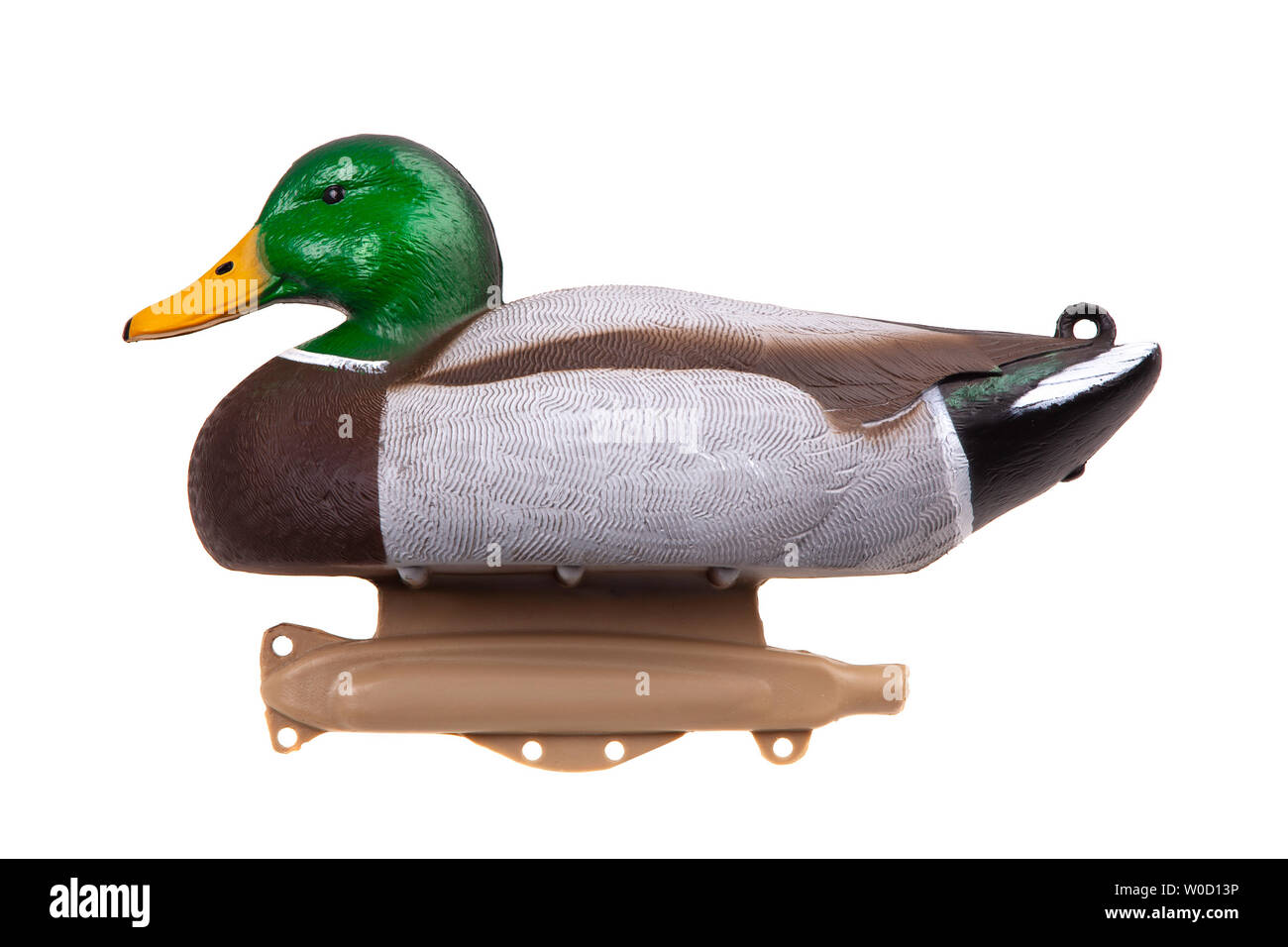 Mallard Duck Decoy isolated on white background - Stock Image