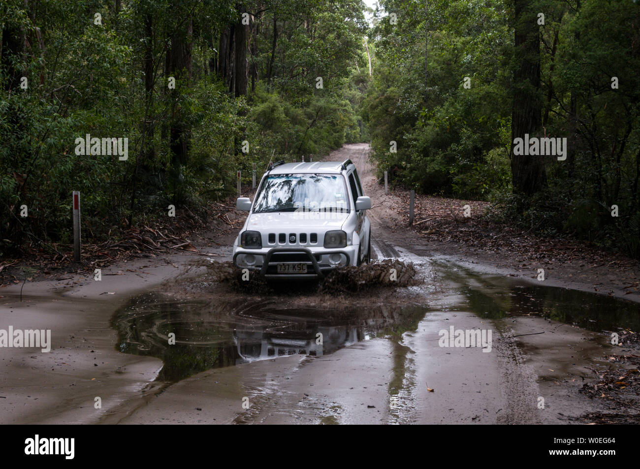 A tourist hired jeep ploughs through some of the deep puddles being along a muddy sandy track after a night of tropical storms, in the rain forest on Stock Photo