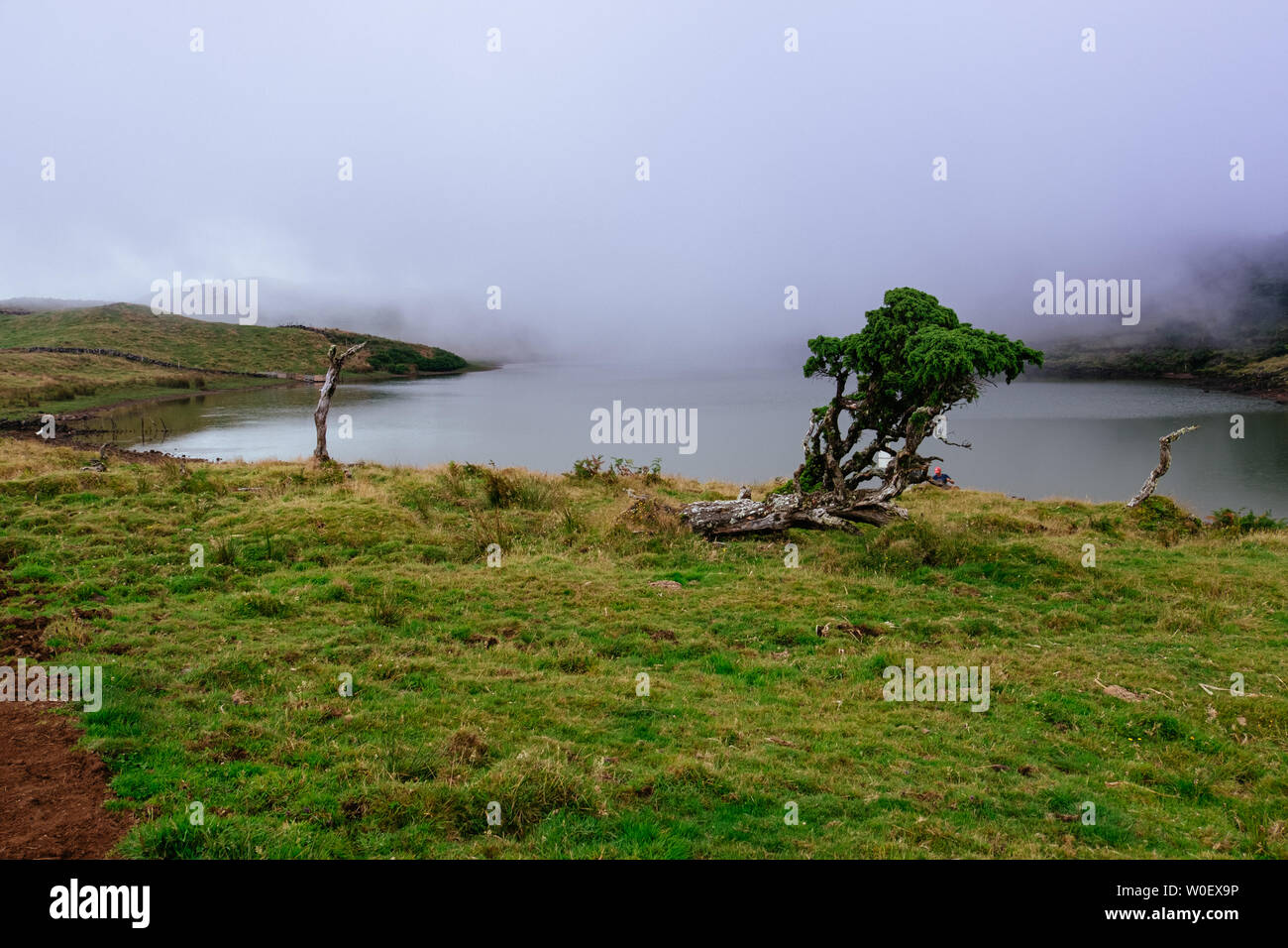 Captain's Lagoon, Pico Island, Portugal - August 2, 2018: a view of a typical Azorean Lagoon In a foggy day Stock Photo