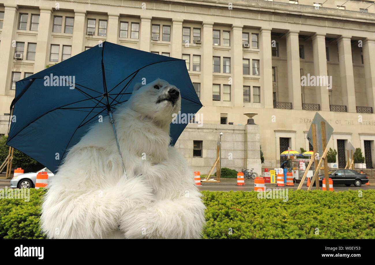 A man dressed as a polar bear, carrying an umbrella, stands