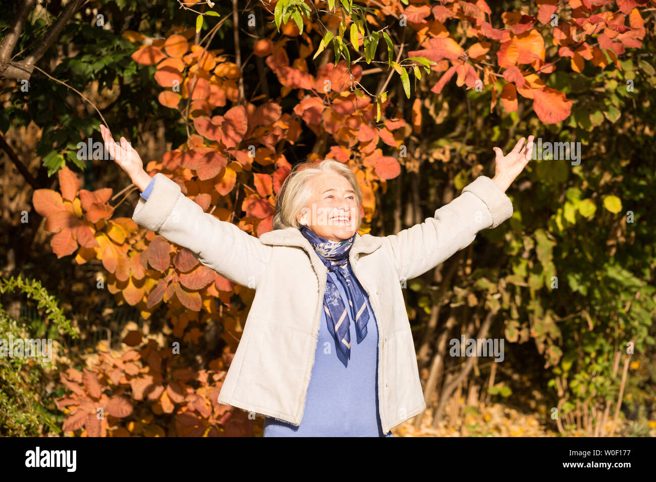 View of a pretty smiling grandma arms in the air in nature in autumnal colors. - Stock Image