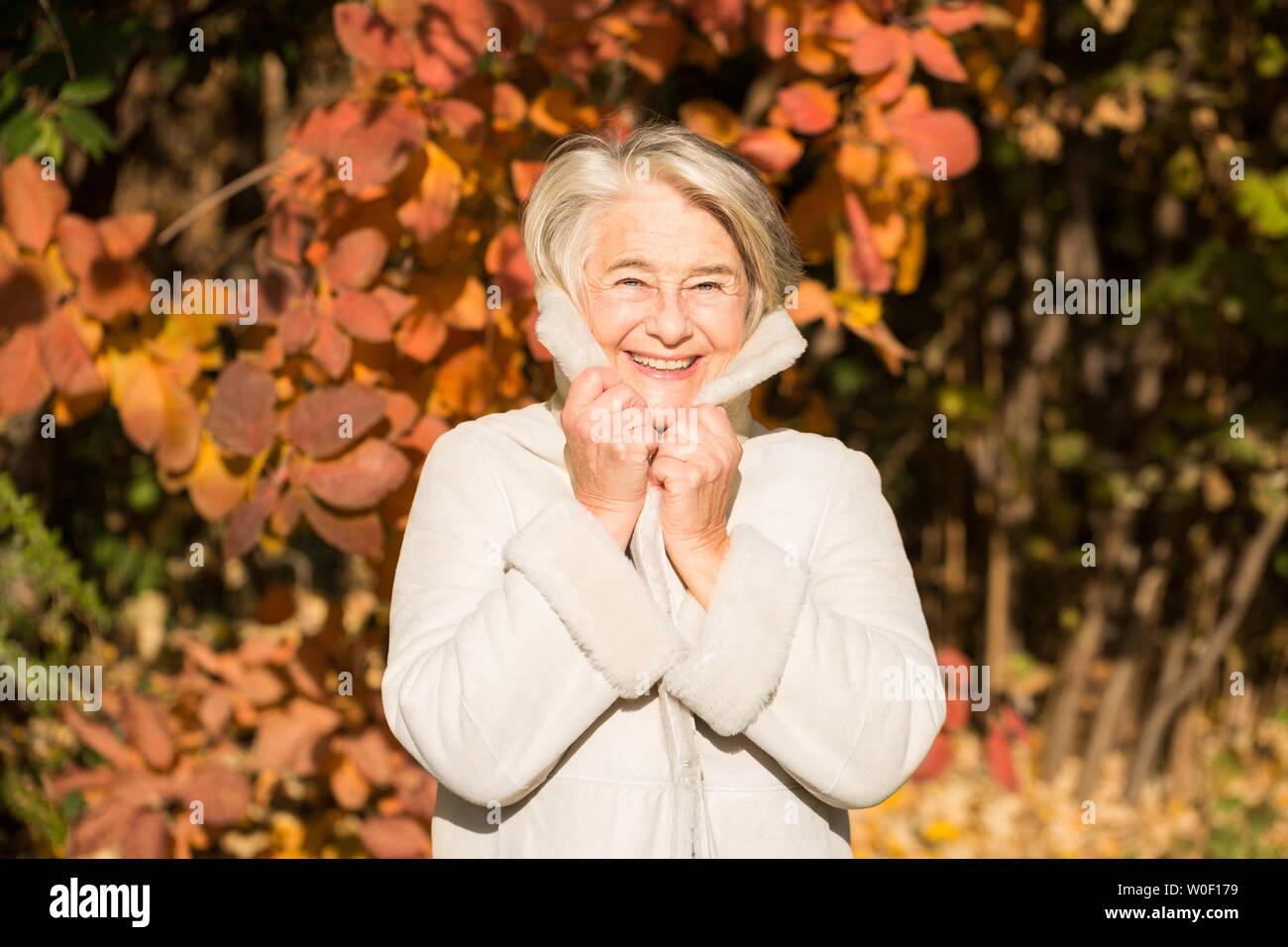 Sunny portrait of a pretty smiling grandma holding his coat collar with his hands in nature in autumnal colors. - Stock Image