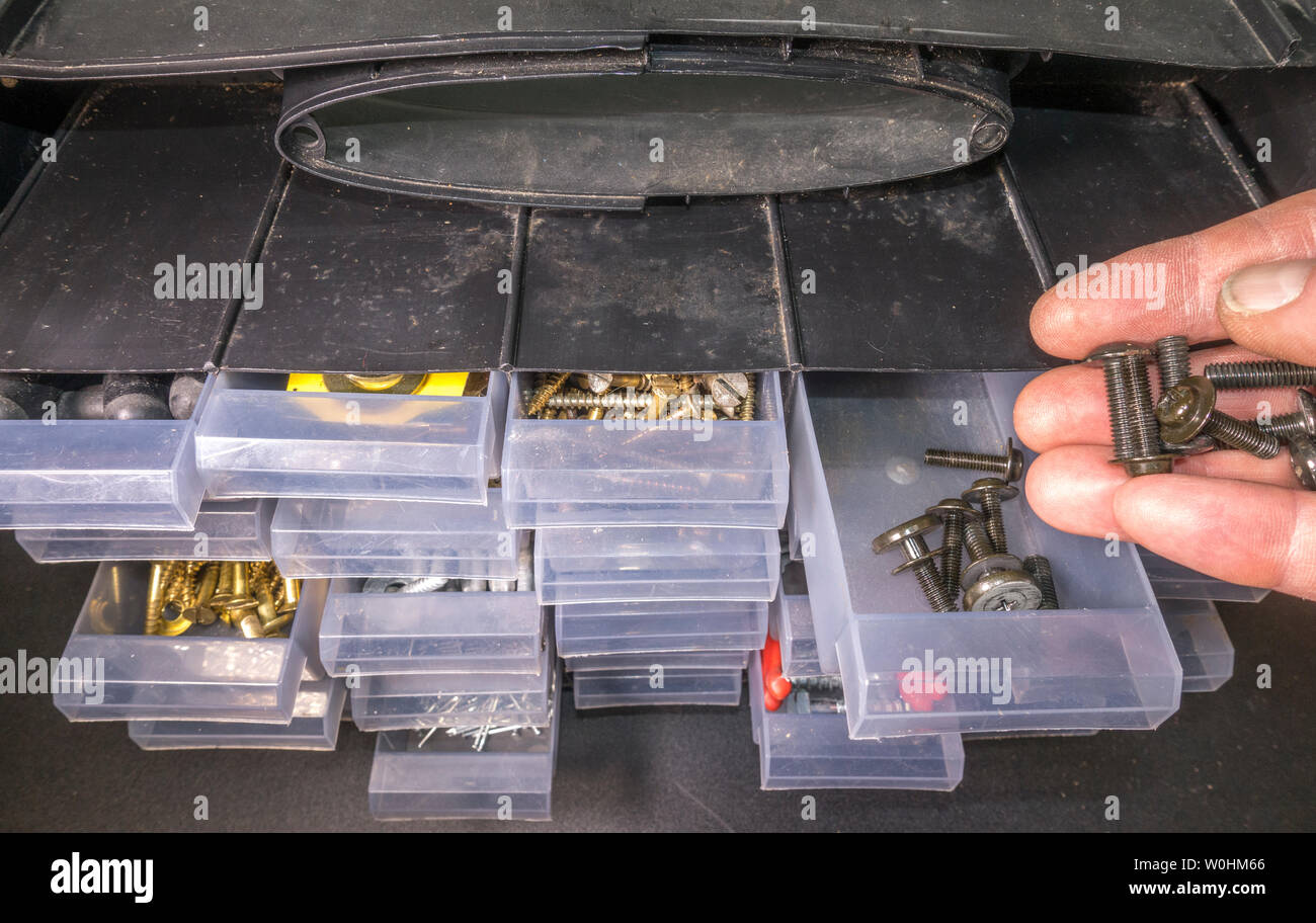 Closeup POV shot of a man's hands pouring small bolts / screws into a compartment tray of an organizer / storage unit for small metal fittings. Stock Photo