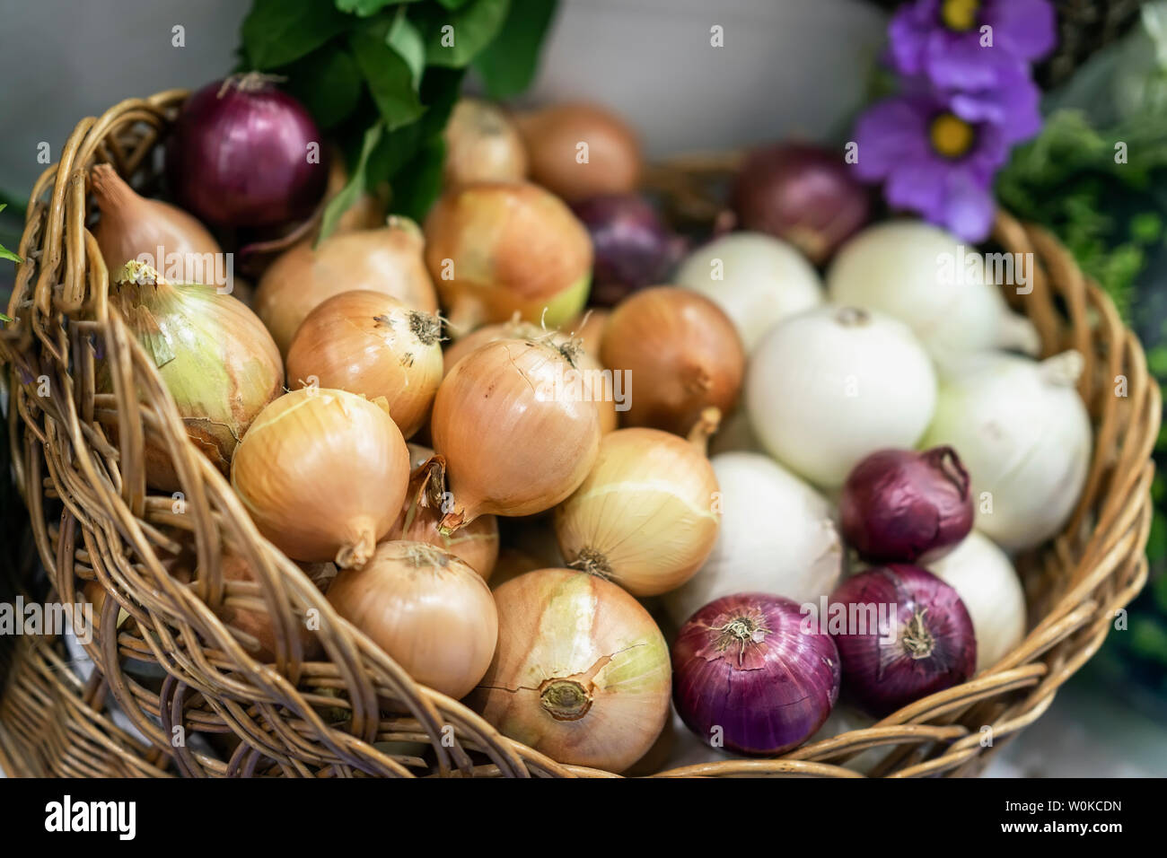 Assorted onions of different varieties. Basket with fresh organic vegetables, Live vitamins, selectiv focus. Farmers market - Stock Image