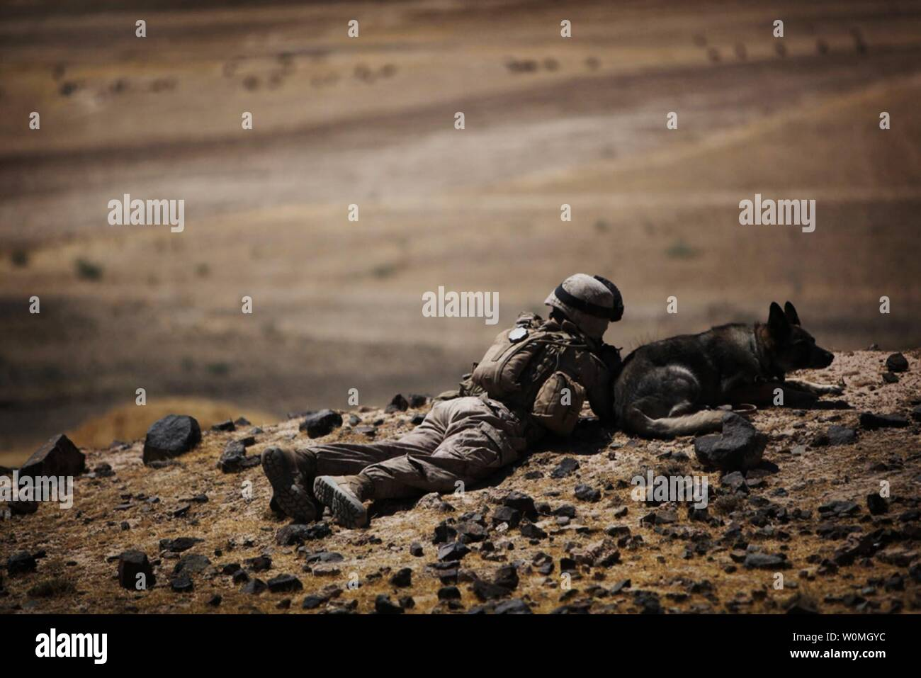Lance Cpl. Daniel Franke, a dog handler attached to Alpha Company, 1st Battalion, 2nd Marine Regiment, Regimental Combat Team 2, lays in the prone on an overlooking hill with his dog in Towrah Ghundey, Afghanistan on June 11, 2010. UPI/Daniel Blatter/U.S. Marines Stock Photo