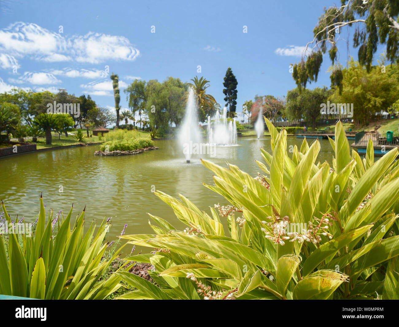 Lake and fountains in Santa Catarina Park in the sunshine, Funchal, Madeira, Portugal - Stock Image