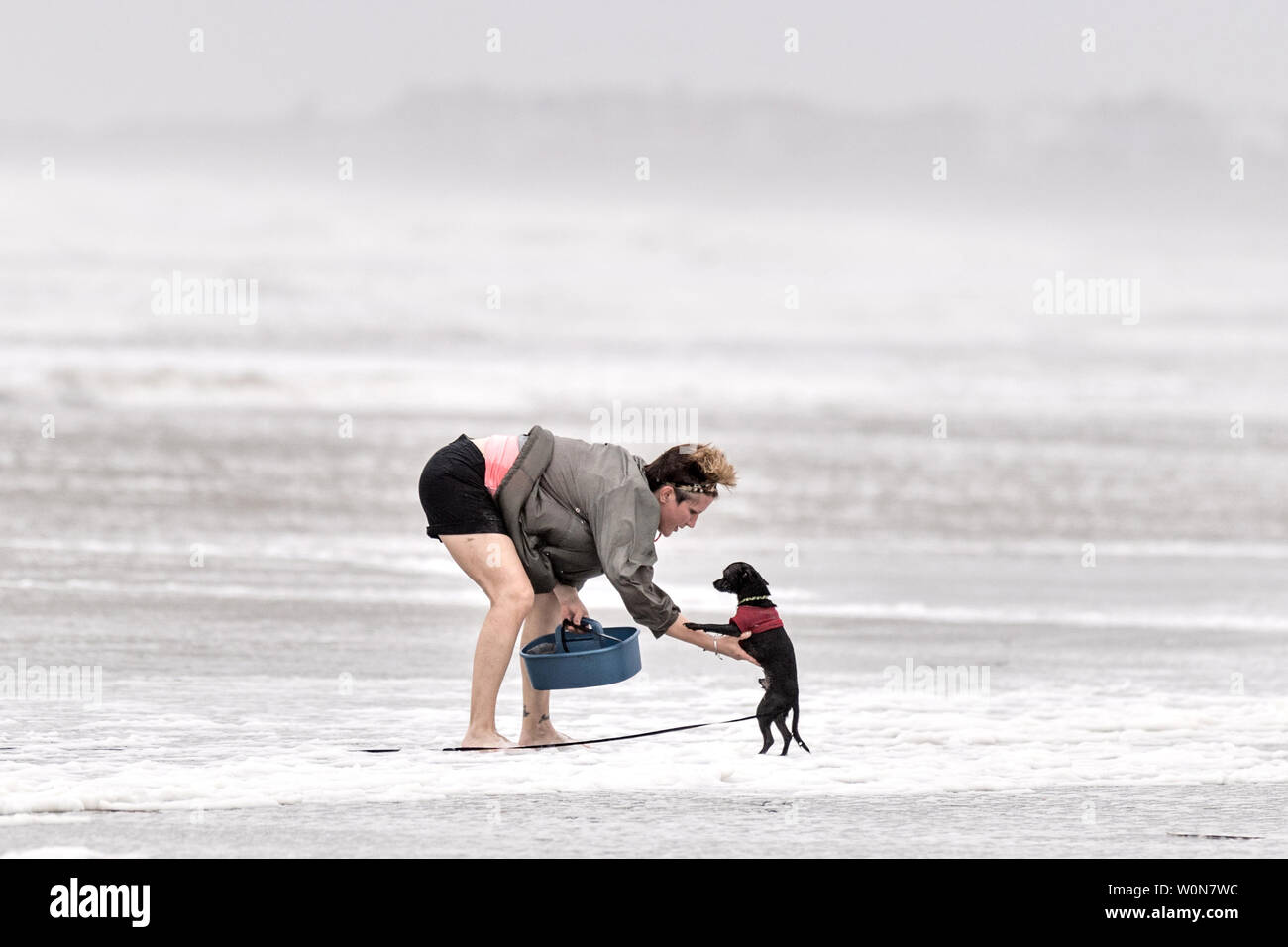 A woman picks up her small dog after tides surged along the beach in high winds from Tropical Storm Hermine in Isle of Palms, South Carolina, on September 2, 2016. Beach goers were discouraged from entering the water due to rip currents, turbulent waves and winds exceeding 50-mph.     Photo by Richard Ellis/UPI Stock Photo