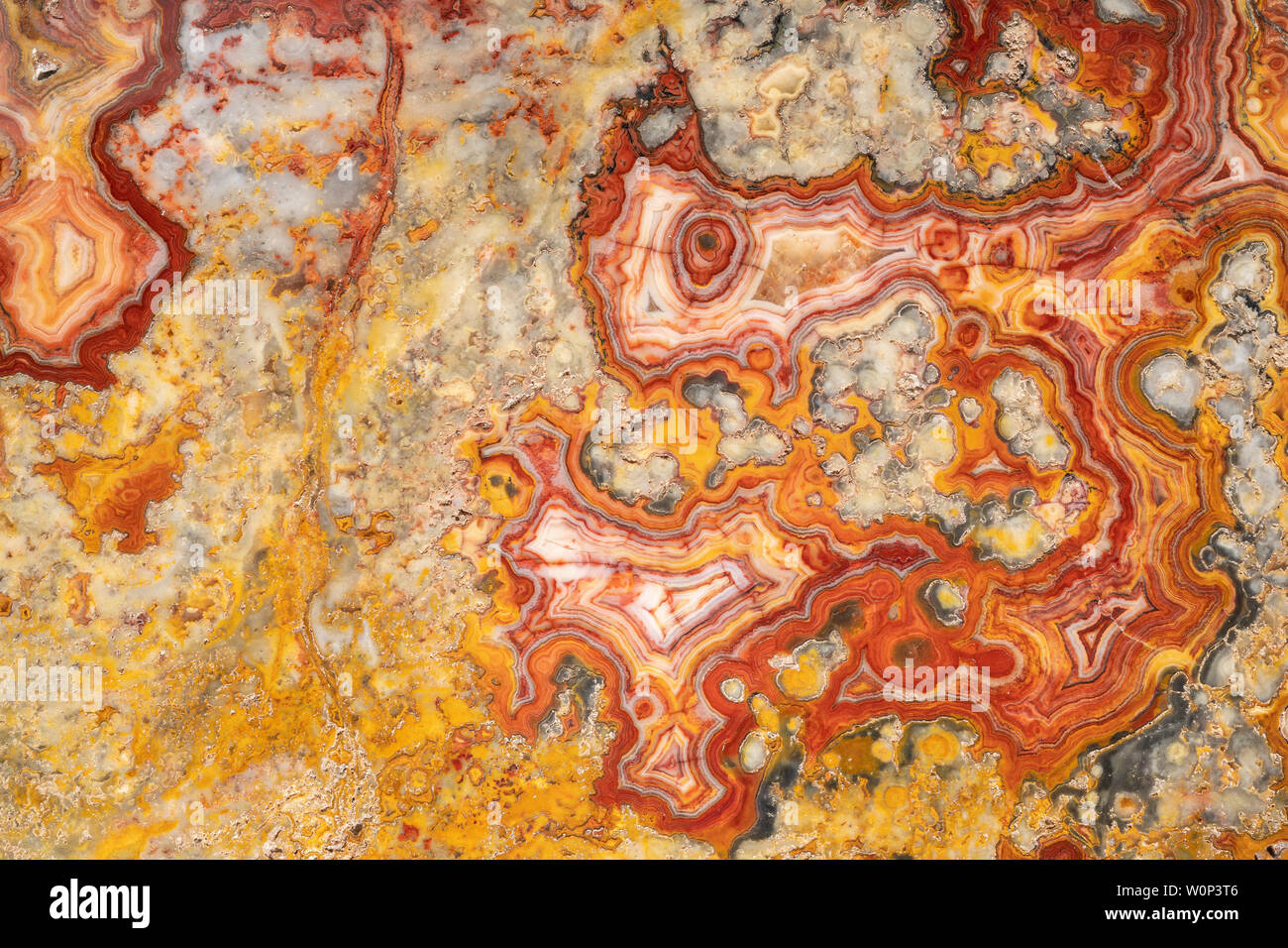Australian crazy lace agate. Origin: Marillana, Australia. Courtesy of ZRS Fossils, By Dominique Braud/Dembinsky Photo Assoc Stock Photo
