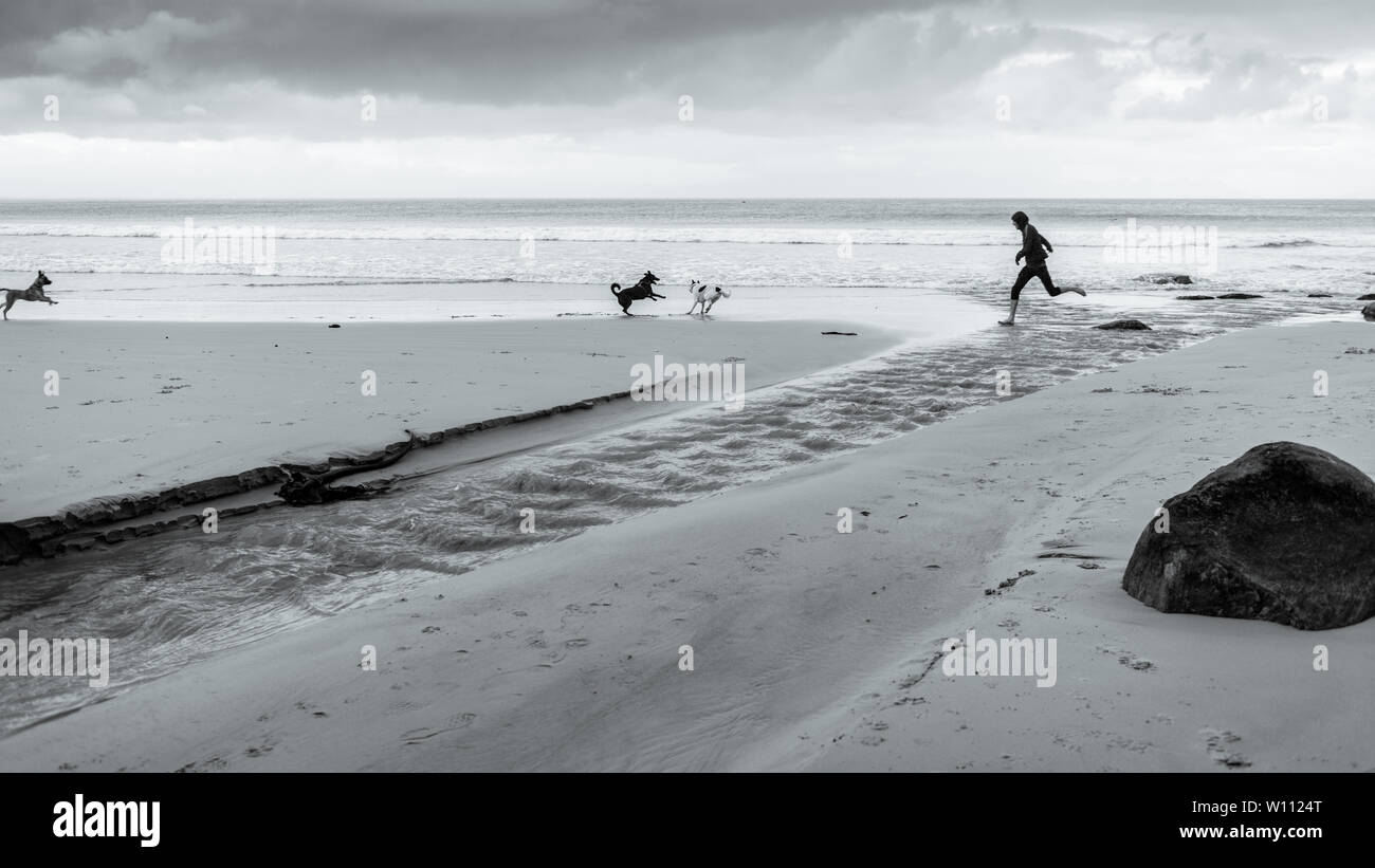 Running with the dogs along Glencairn beach on South Africa's False Bay coastline, near Cape Town, during the country's winter months - Stock Image