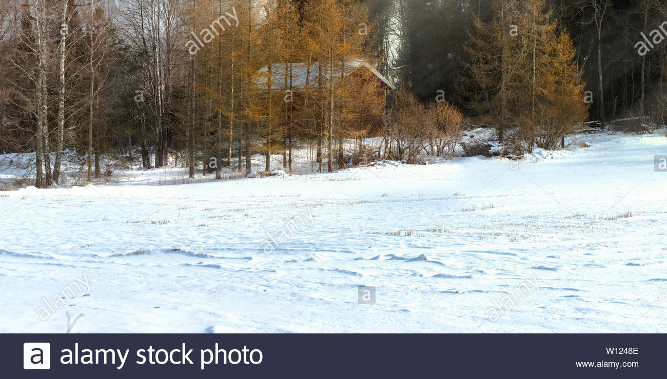 Red barnhouse at snow field - Stock Image