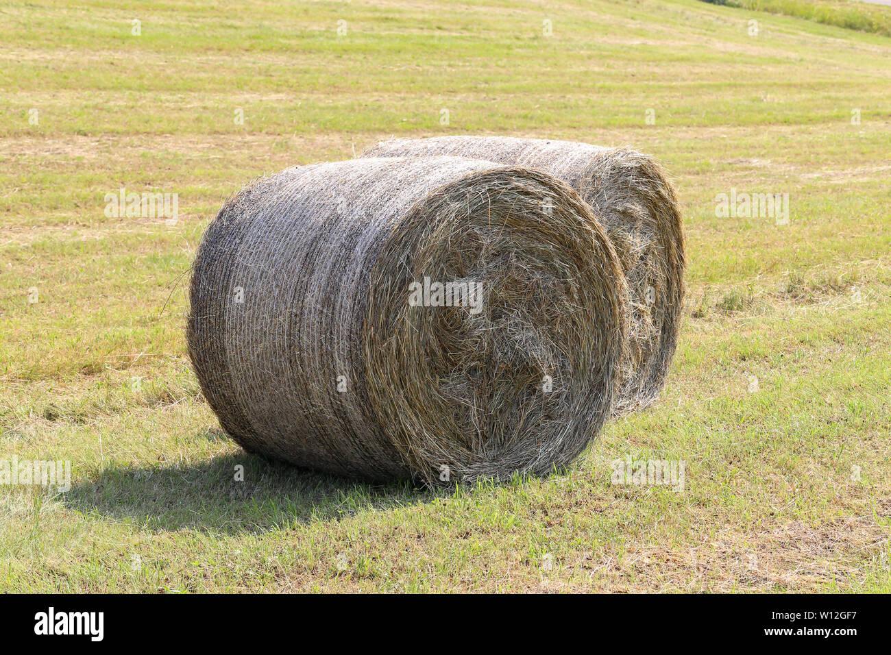 New Land Rolls Stock Photos & New Land Rolls Stock Images - Alamy