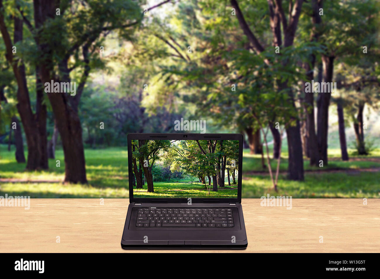 Laptop on a table against a blurred background forest - Stock Image