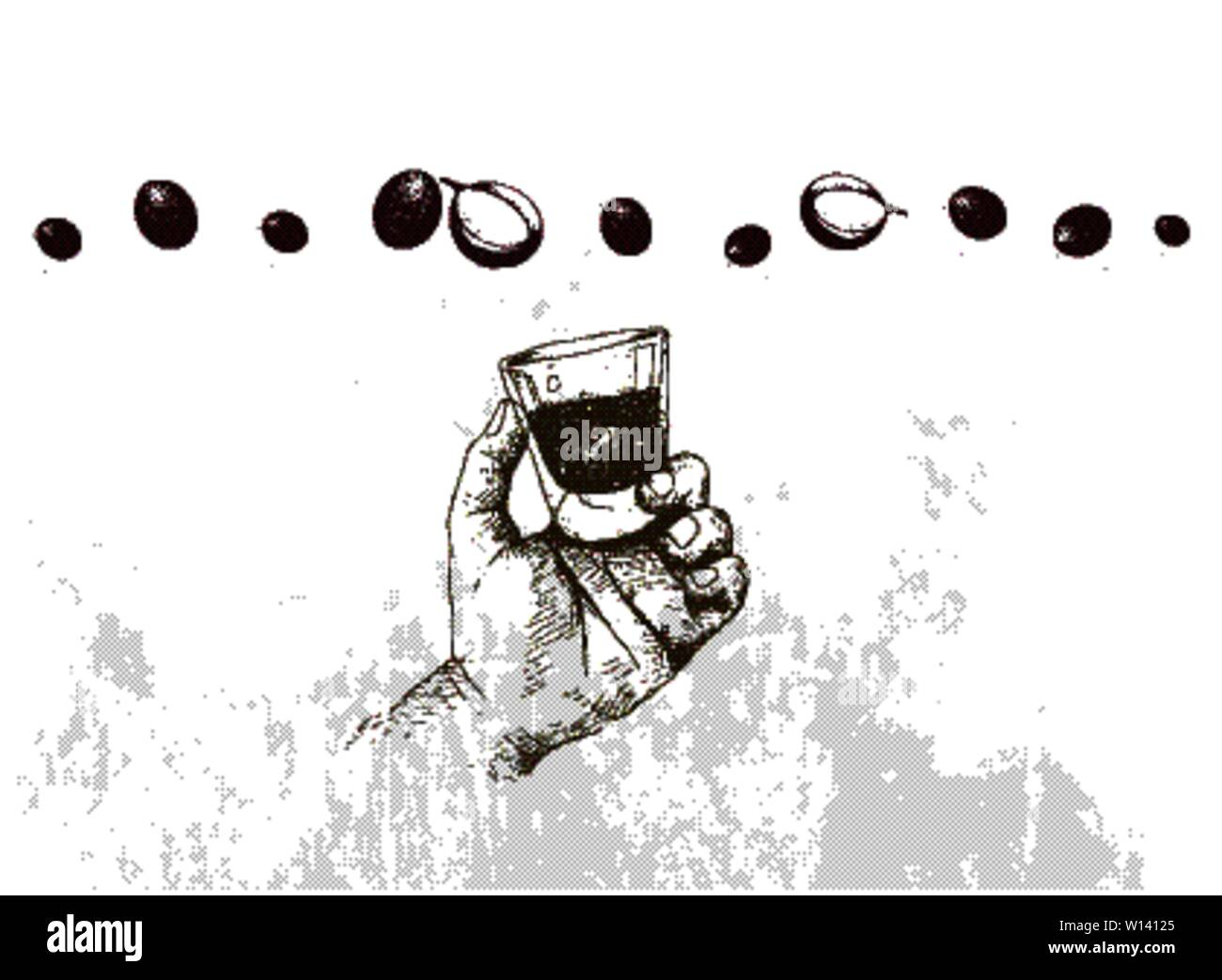 The Flavor of Coffee, Illustration Hand Drawn Sketch of Hand Holding A Shot of Espresso with Coffee Cherries. Stock Vector