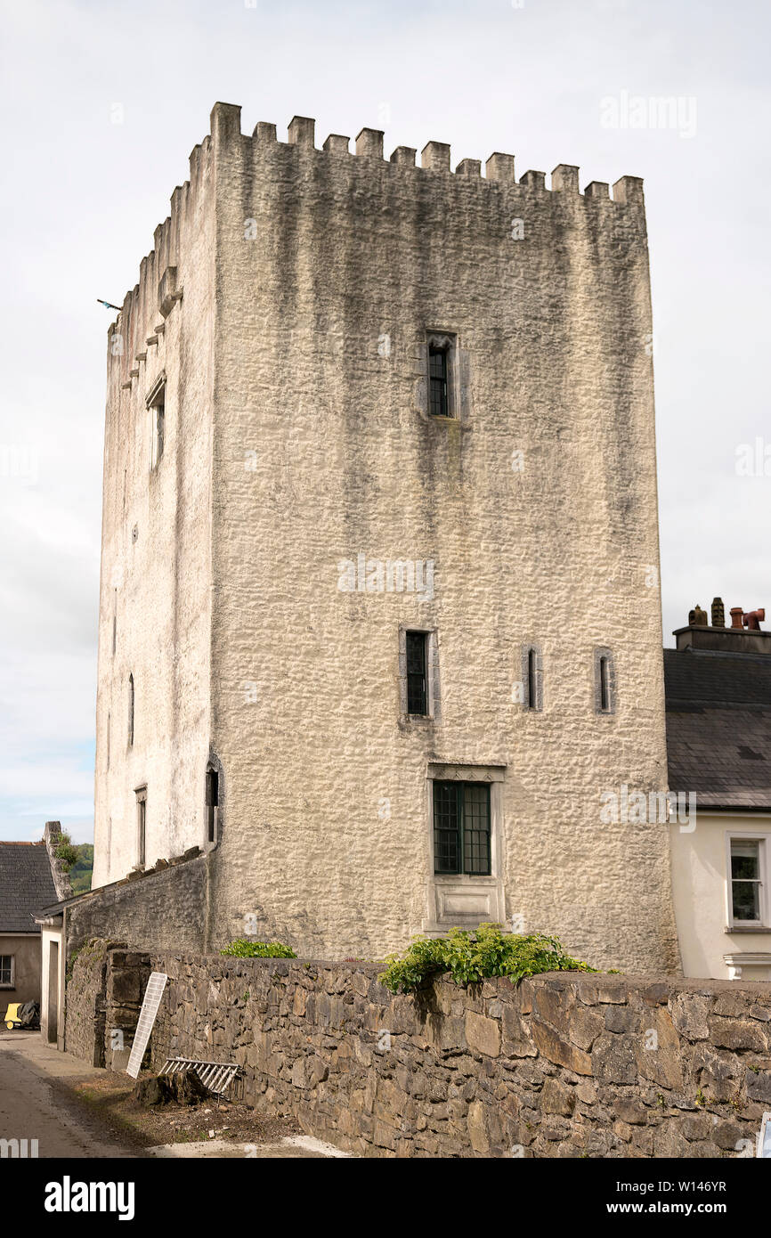 Carrick-on-Suir Town Walls Conservation, Management and
