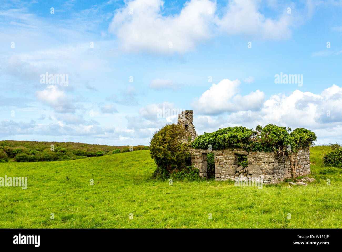 Ruined house in the middle of the meadow in the Burren, geosite and geopark, Wild Atlantic Way, wonderful sunny spring day in County Clare in Ireland - Stock Image