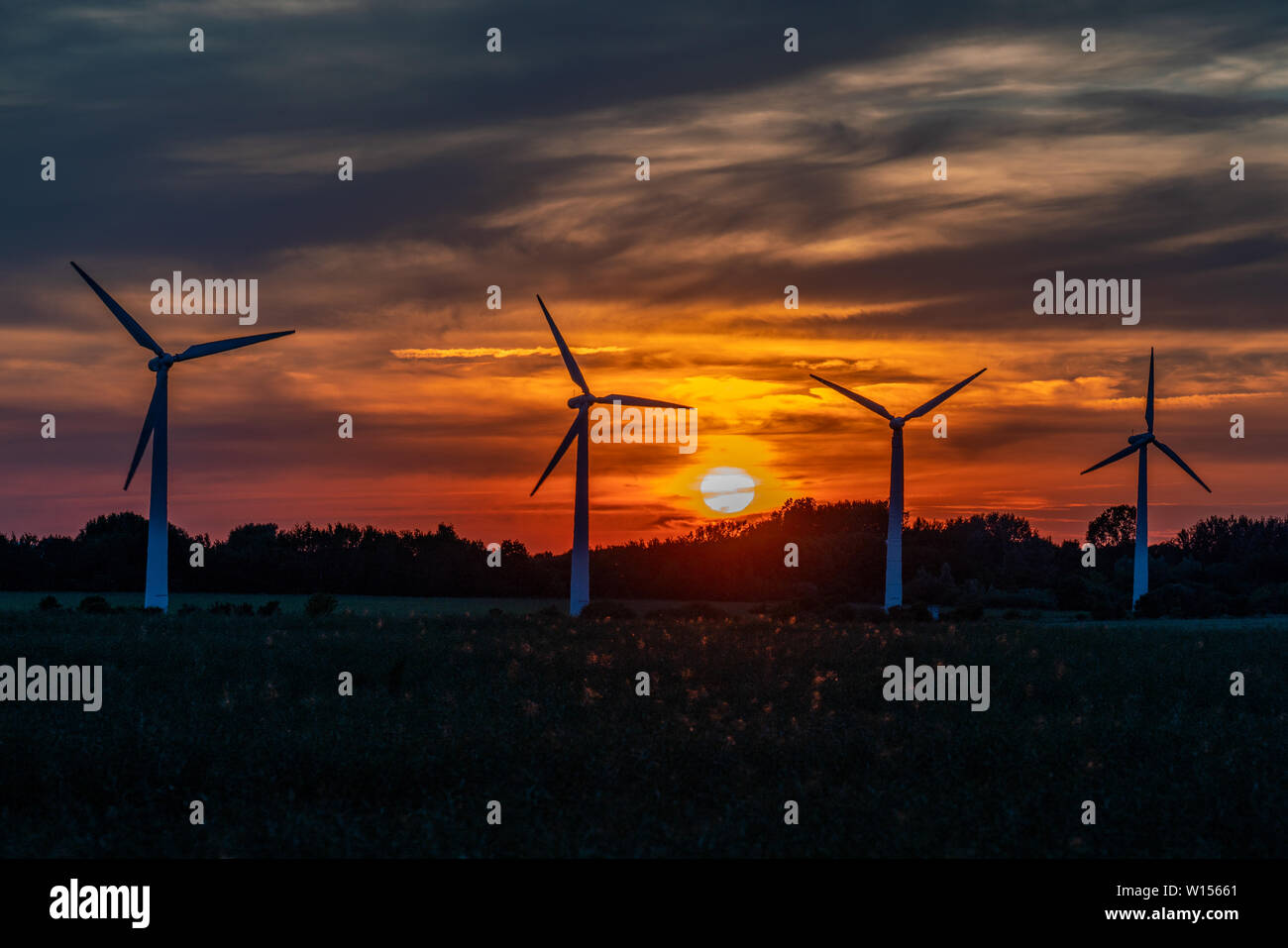 four wind turbines on a field against a golden sunset with a sky on fire in the background - Stock Image