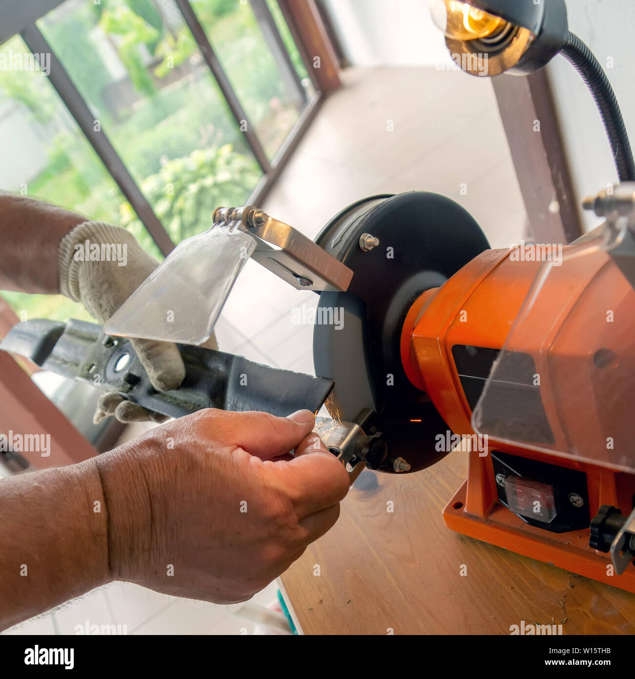 Master sharpens on the machine metal knife lawn mower. The master's hand in white gloves holding metal plate. - Stock Image