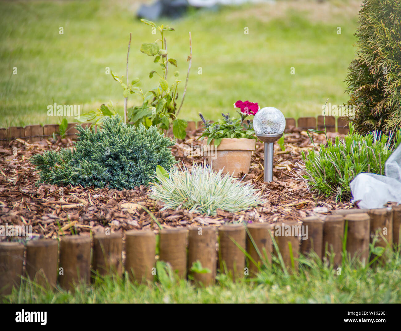 Flower bed with different flowers covered with bark mulch in summer. Solar lamp in the center. Stock Photo