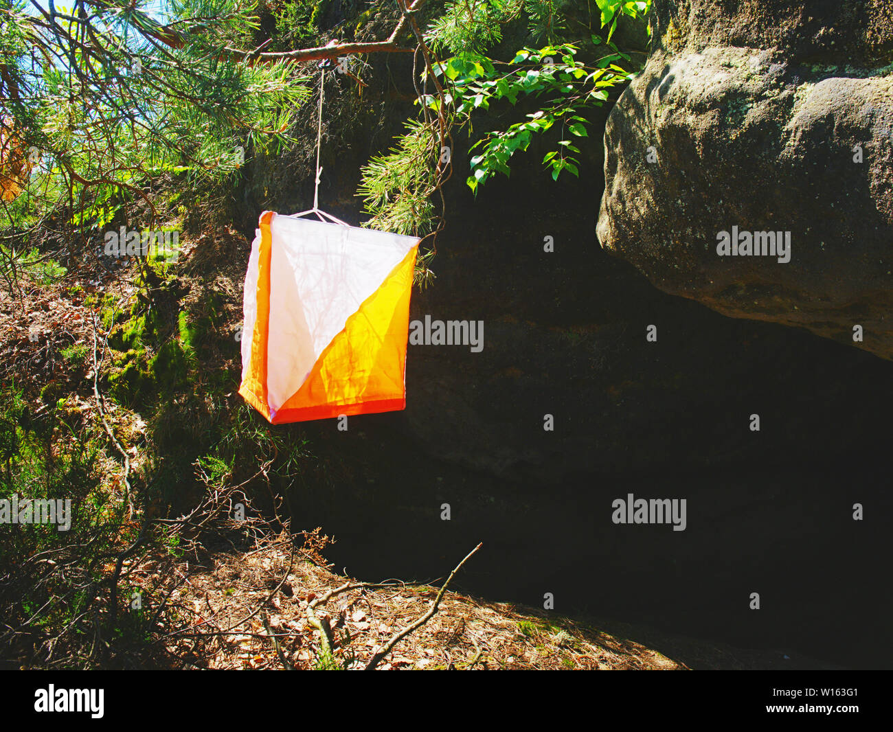 Orienteering orange white box outdoor in a forest. Popular sport activities in nature range - Stock Image