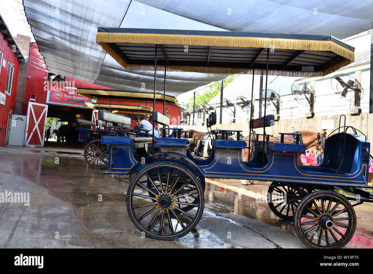 Horse and Carriage Works for Tourist Tours, Fans to Cool Horses, Plenty of Water, Personal Bathing of Horses, Stables, Open Doors, Visitors Welcome - Stock Image