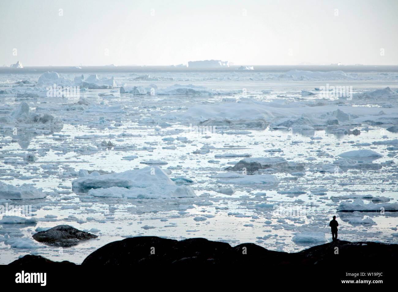 A man looking at icebergs from the Sermeq Kujalleq Glacier, a.k.a. the Ilulissat Glacier. The glaciers of Greenland are melting much faster than earlier predicted. Before 2004 inland ice gave off between 50 - 100.000 cubic kilometers of melting water annualy. New figures show that this number is now up to 300.000, an increase of 400 percent. Stock Photo