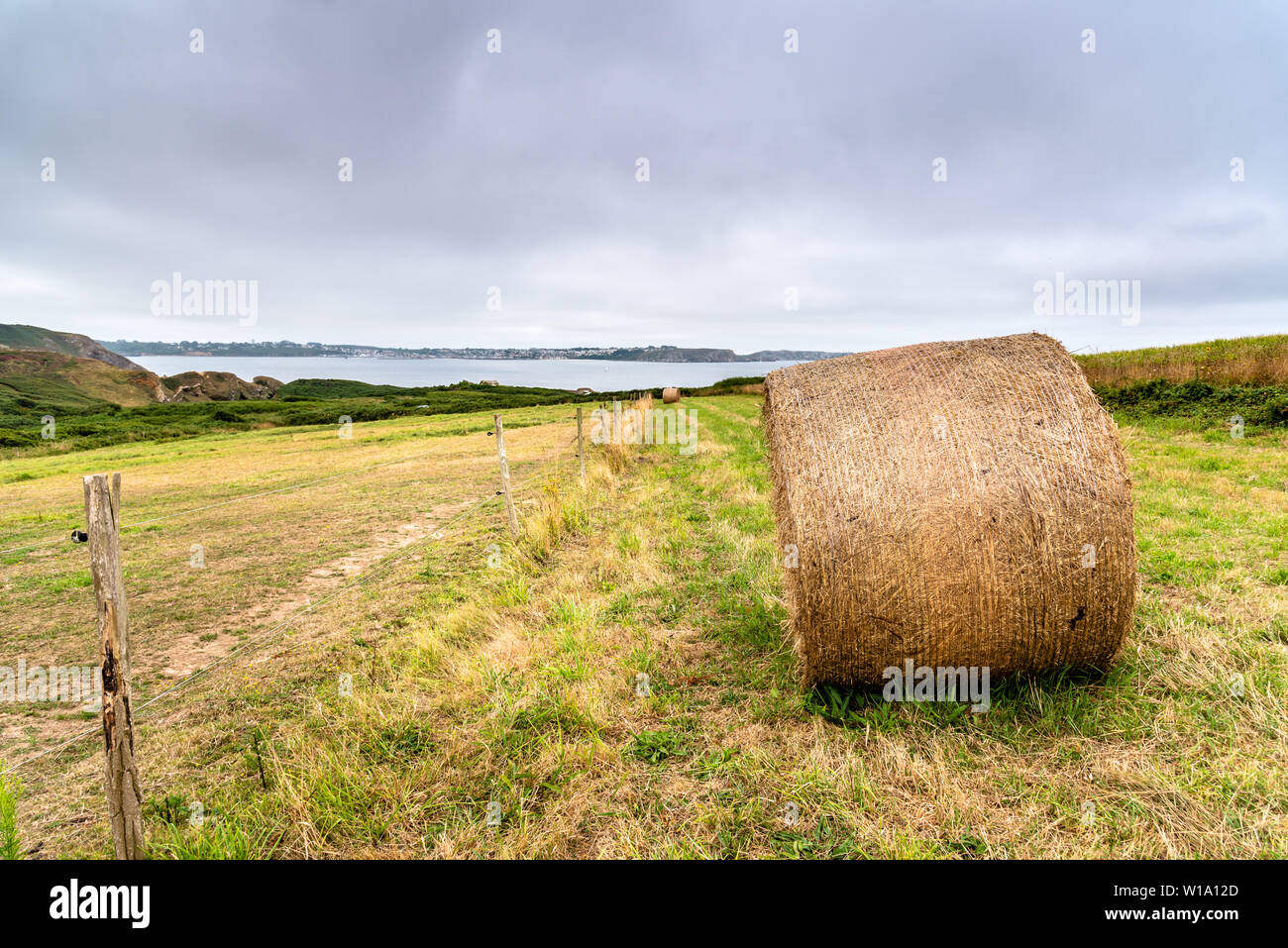 Field with hay bales after harvest in summer against cloudy sky. Copy space Stock Photo
