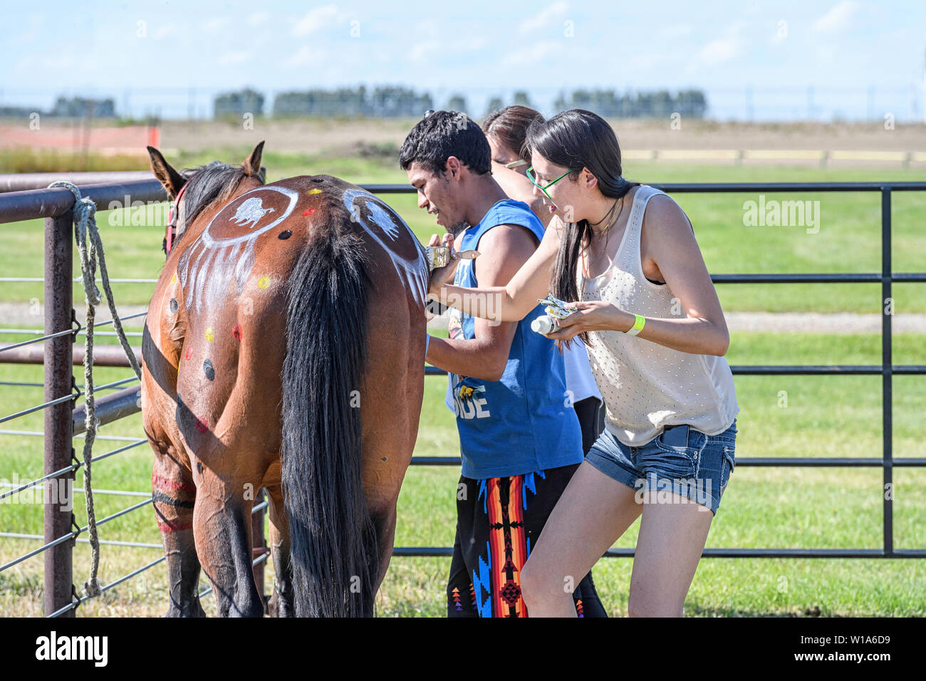 Indian Horses Painting High Resolution Stock Photography And Images Alamy